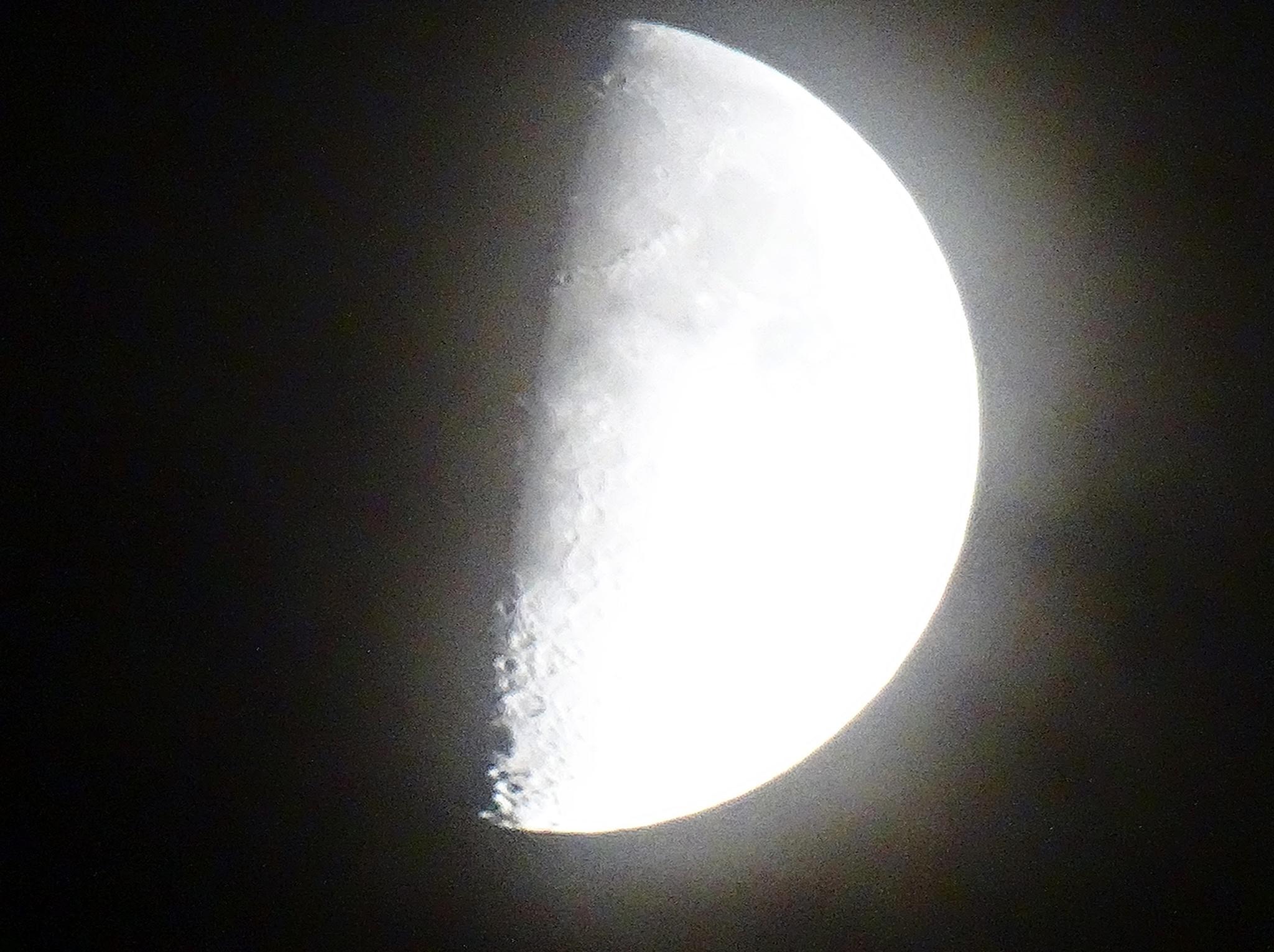Half Moon by T J M