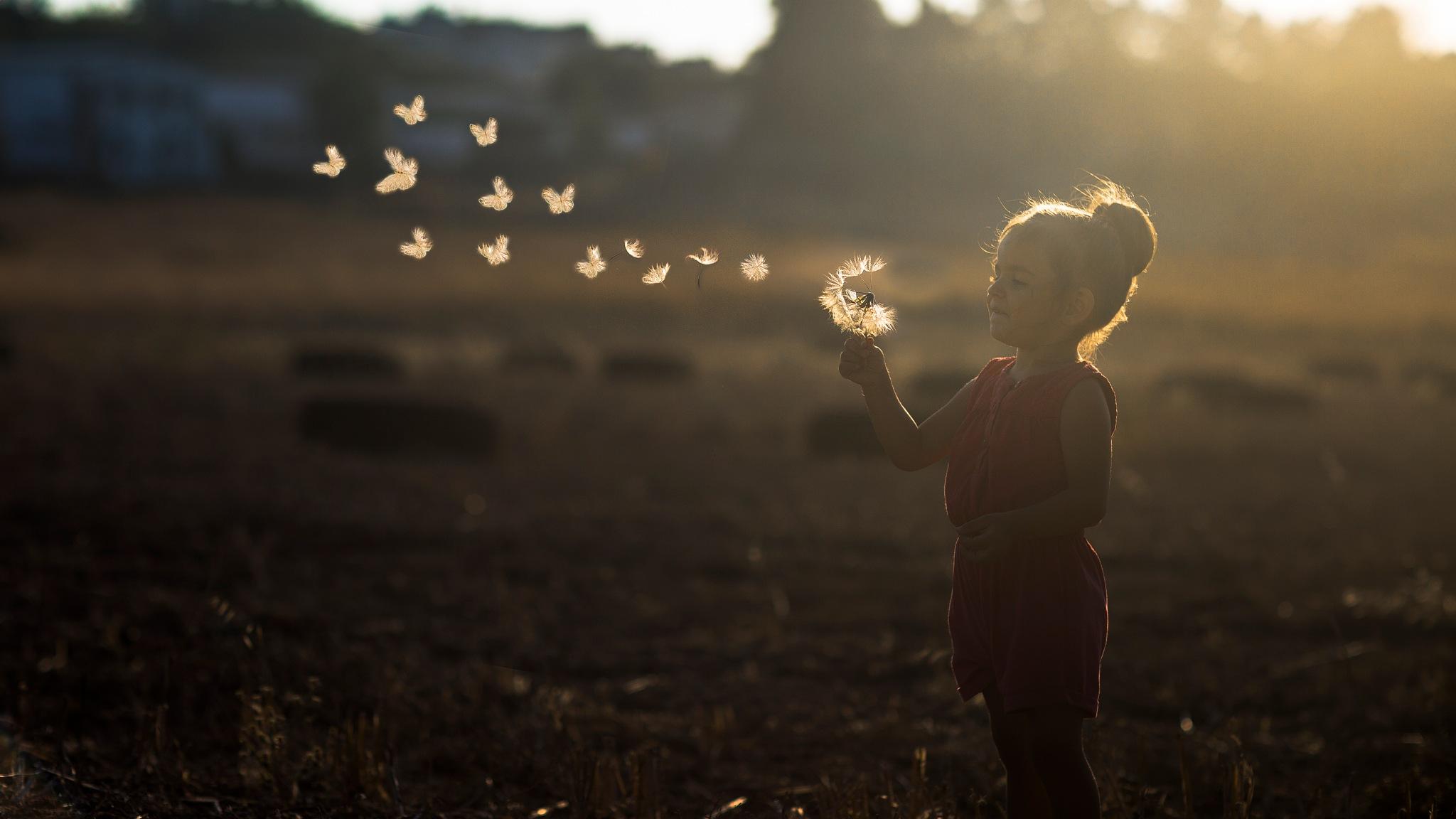 Dream by serkan_atis
