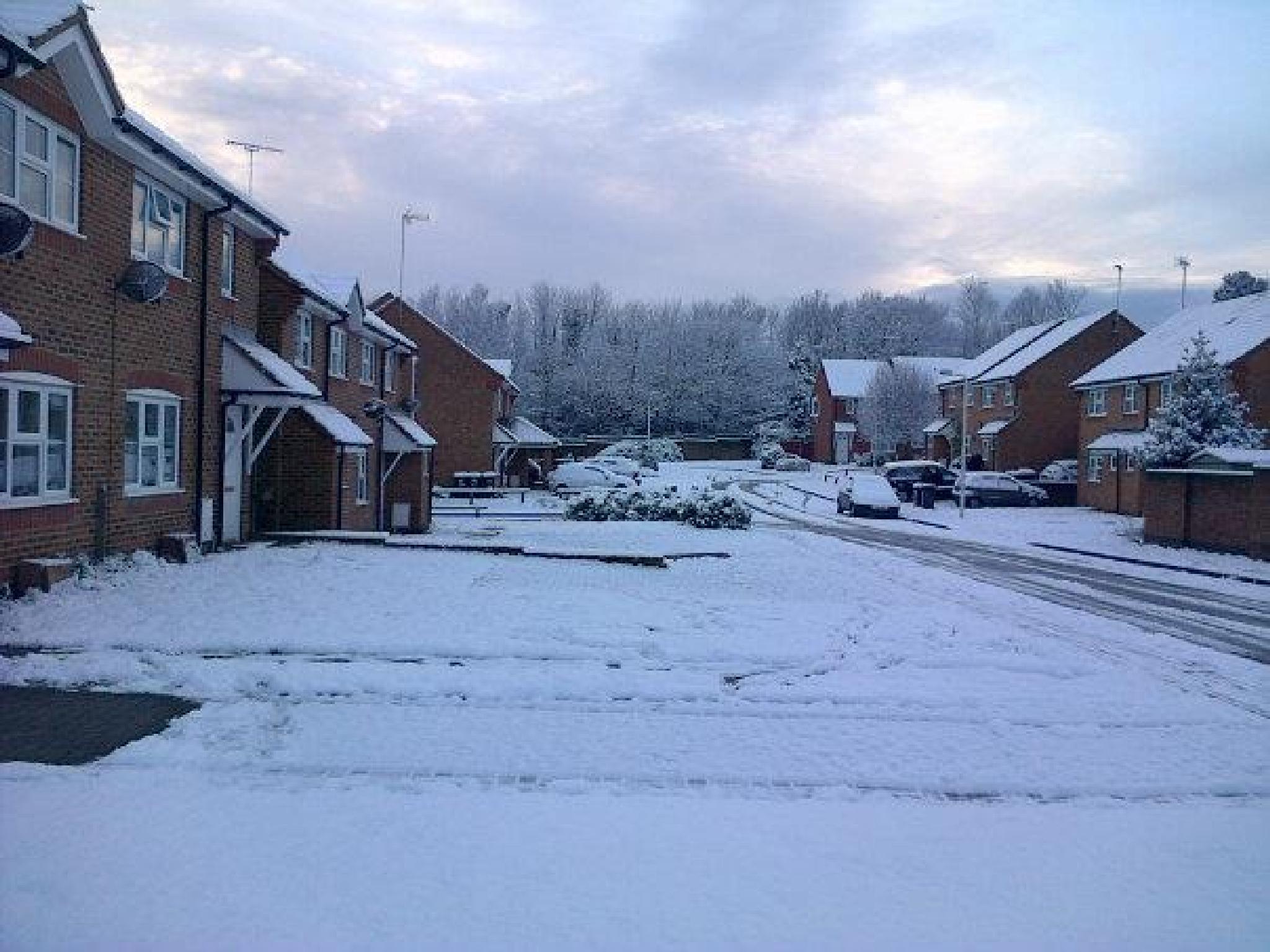 Winter 2013 by Zelda Anderson