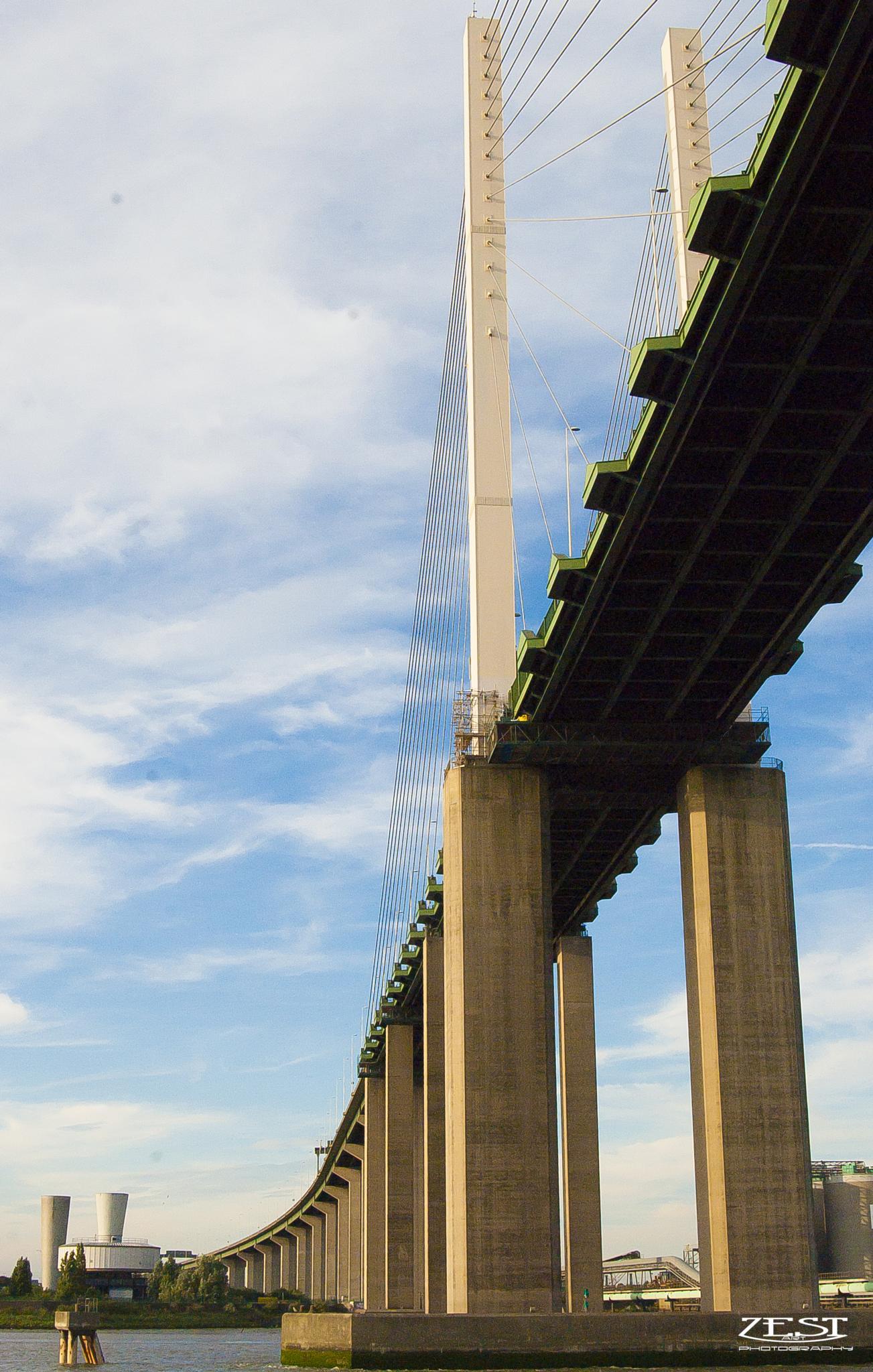 bridge by Zoey Smith