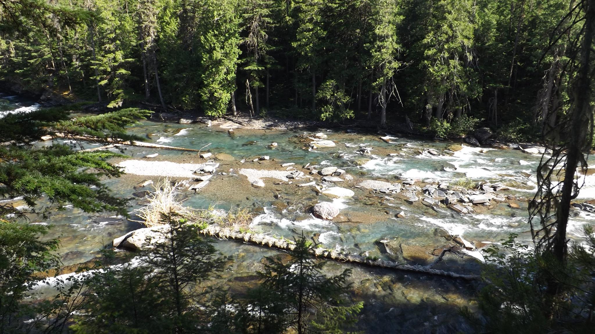 Glacier Park River by MissRenee40