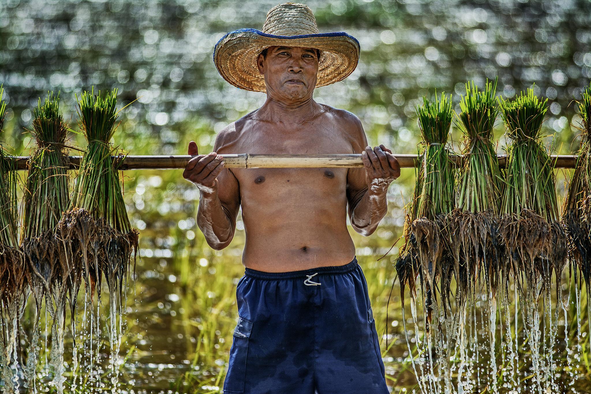 Weightlifter Farmer by Ratchakit Kannika