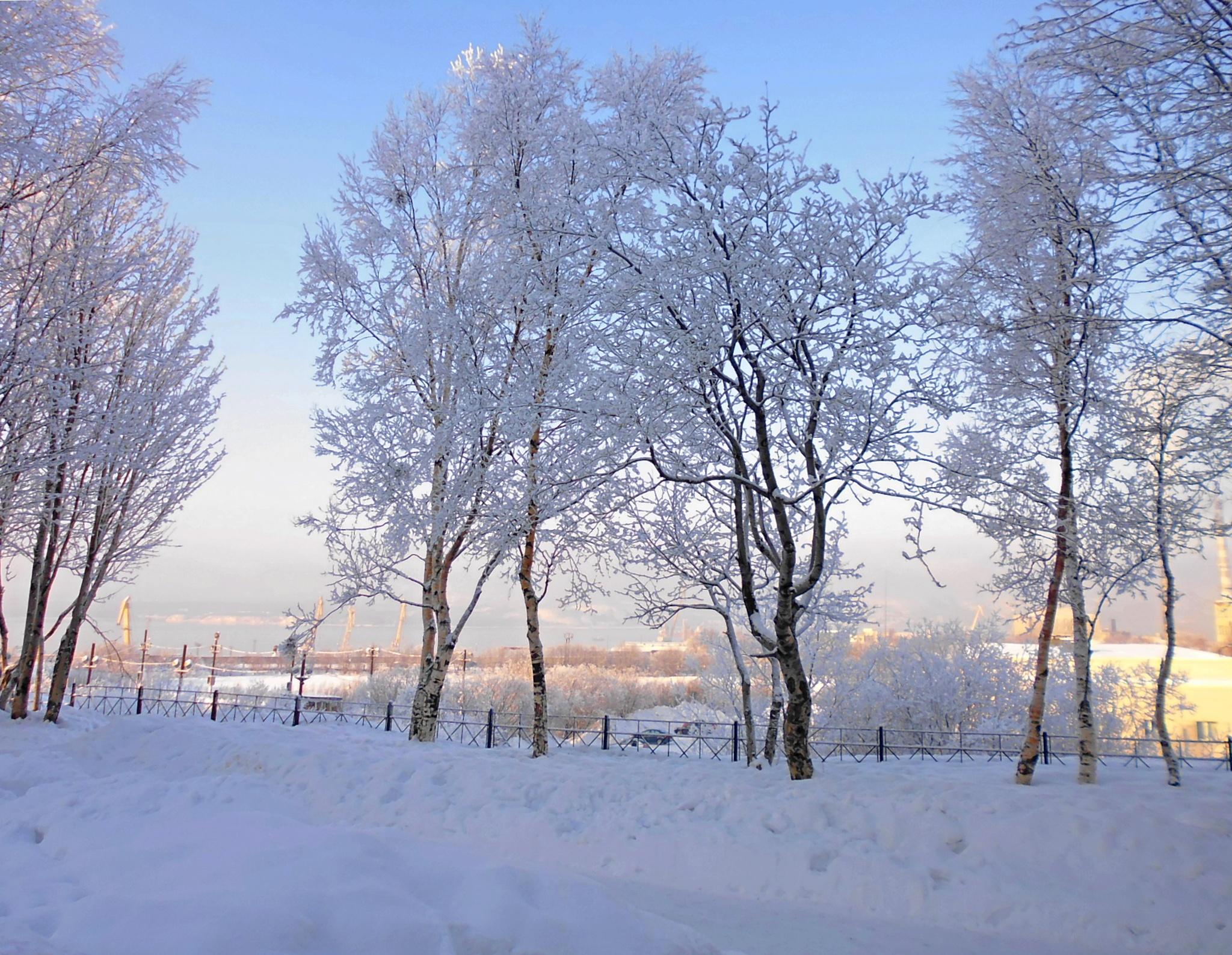 Murmansk.Winter by hlabistin.nick