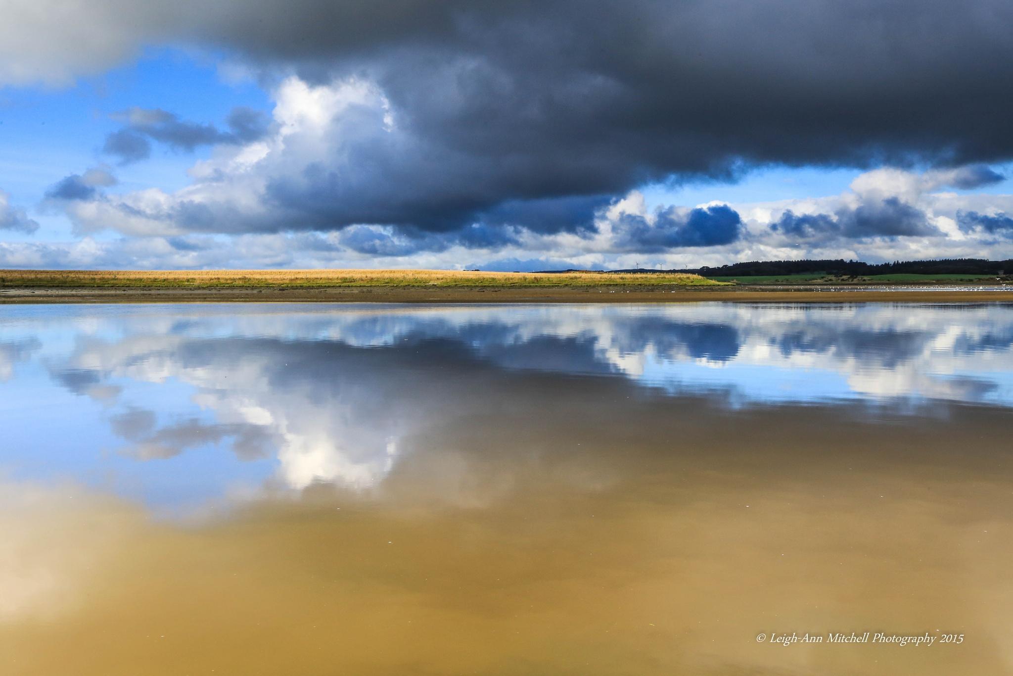 SHADES OF BLUE by Leigh-Ann Mitchell