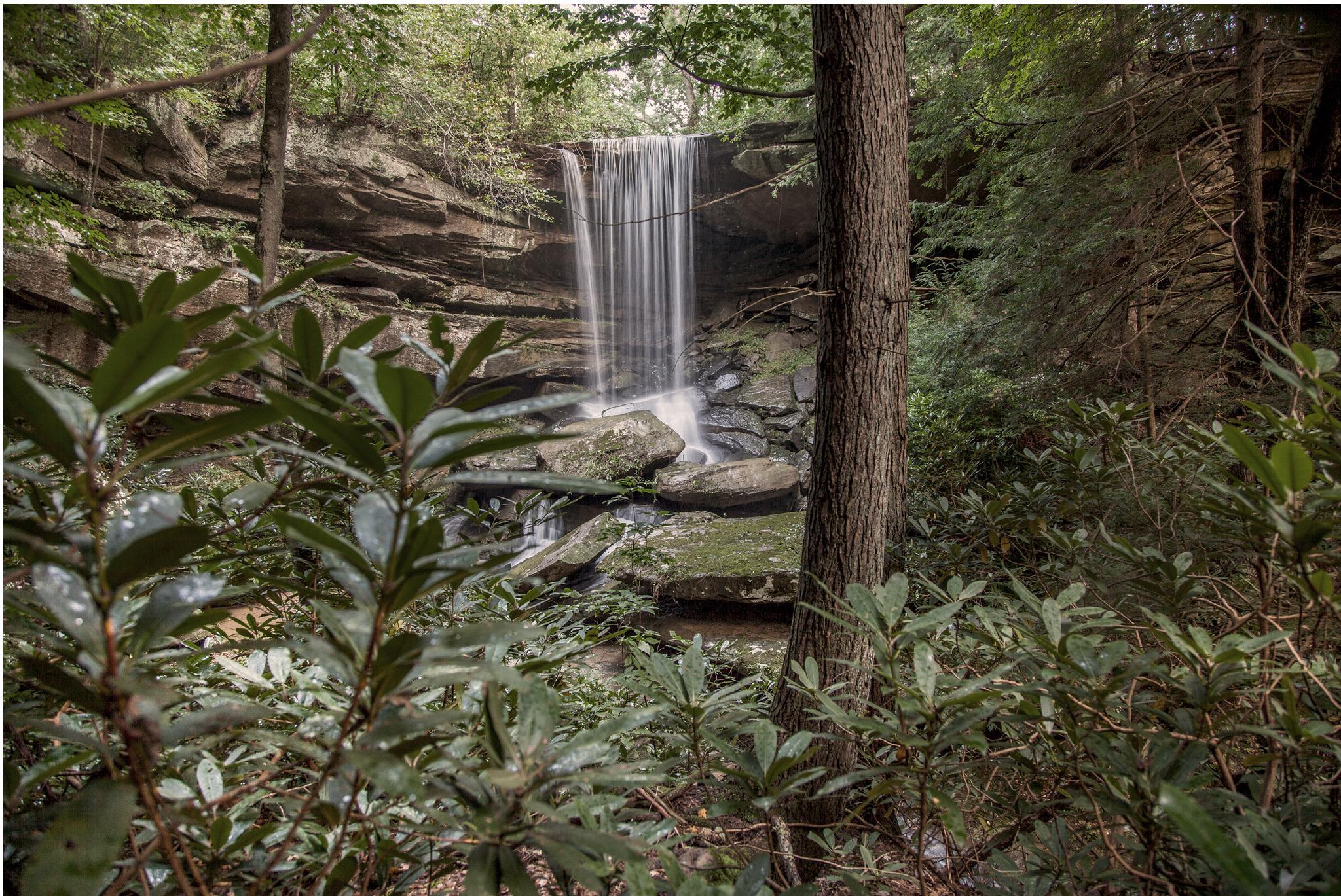 WaterFall on Coon Creek Kentucky  by Diana Clark