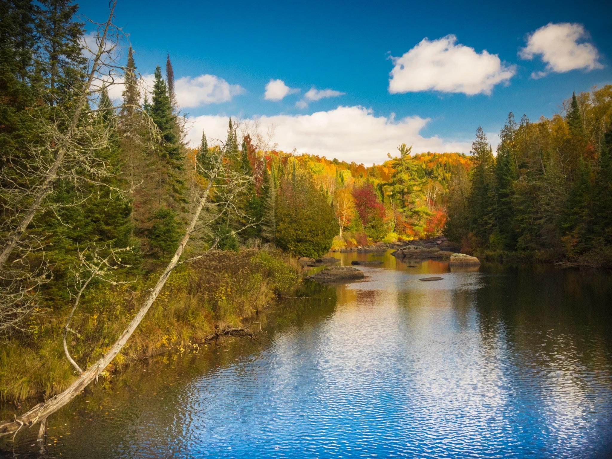 Autumn Landscape by Eugenie Robitaille