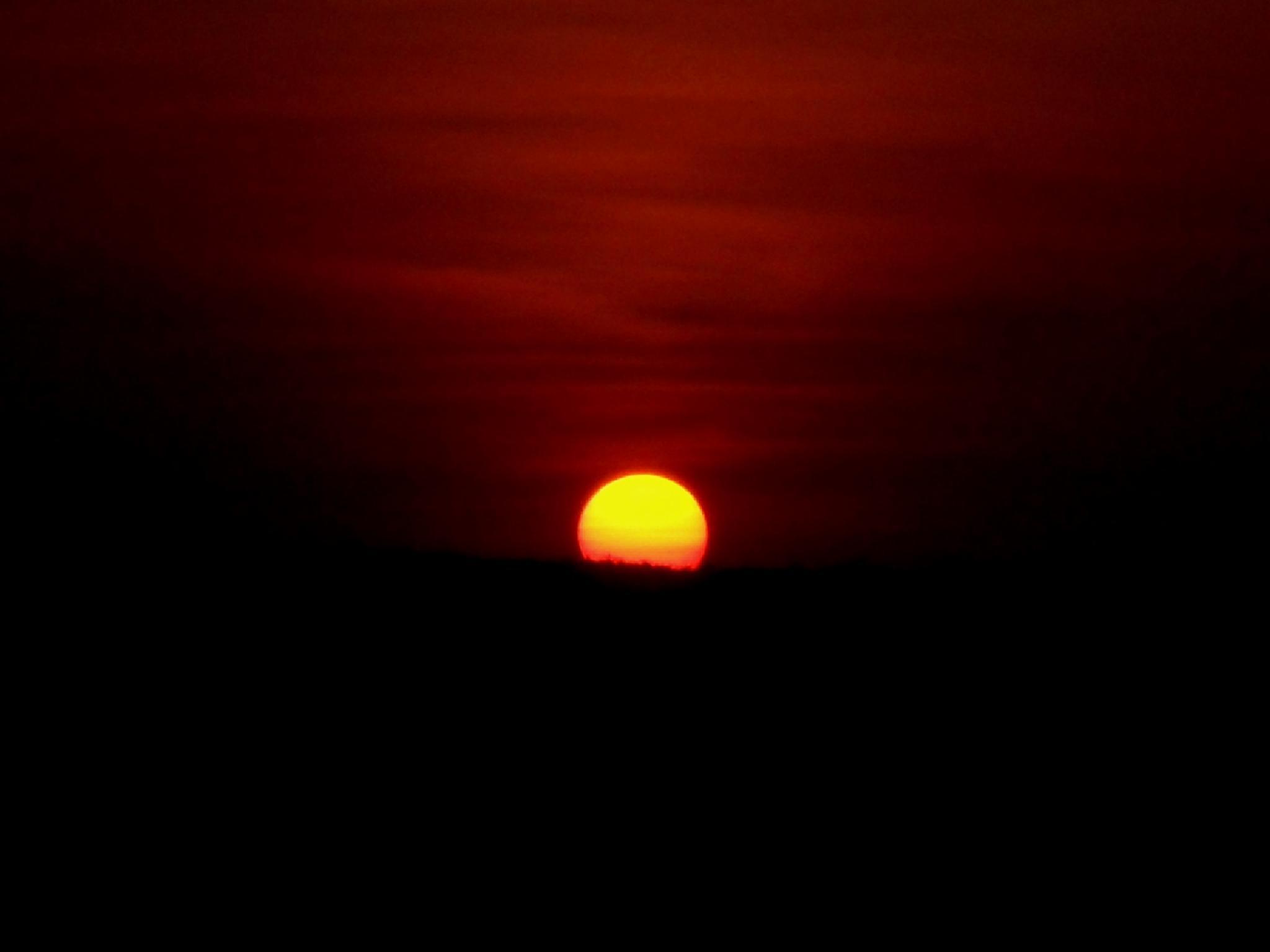 The Mistaken Dawn by Abhishek Ghosh