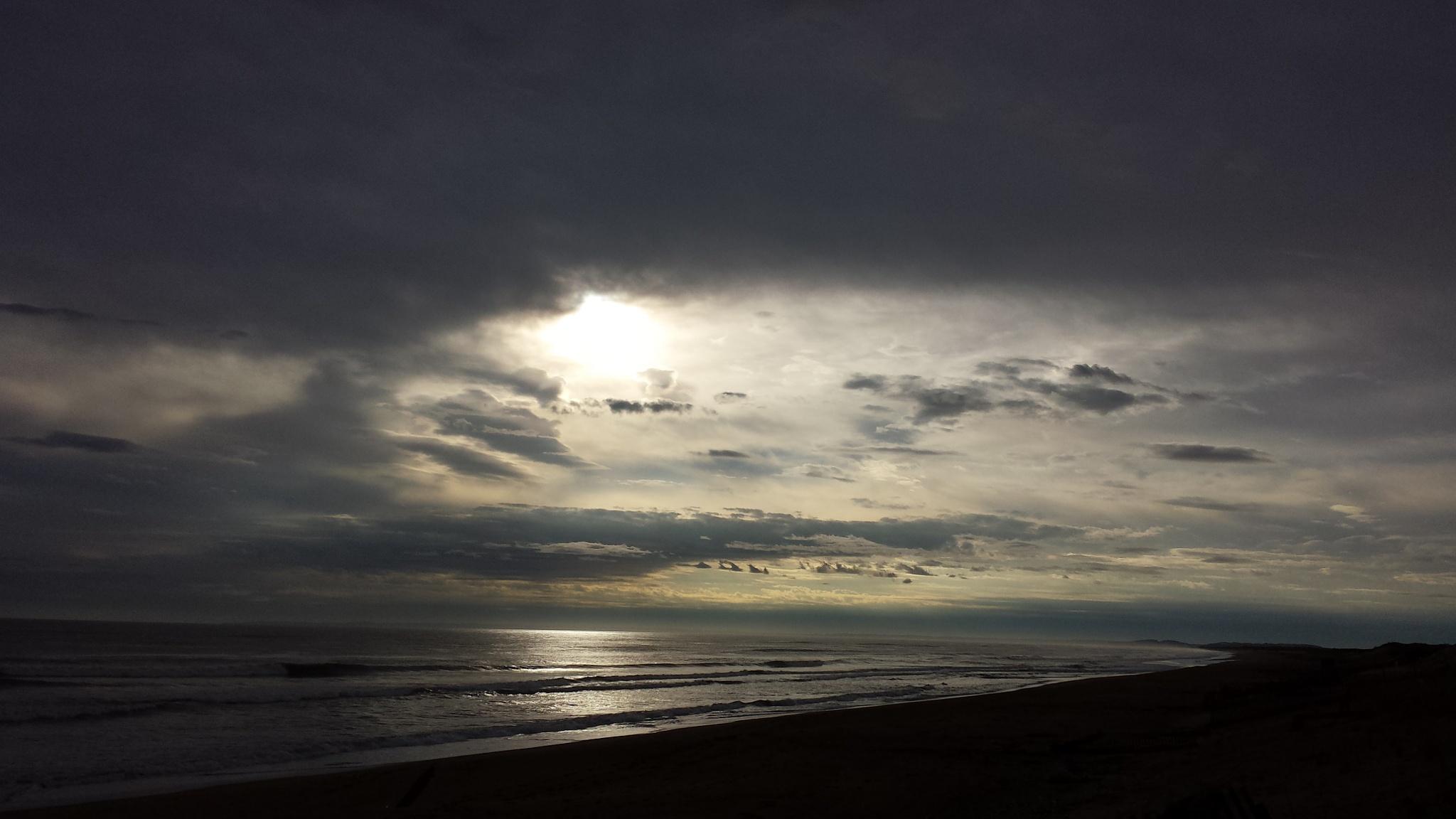Sun Peeking Through... by Cary J.Casse