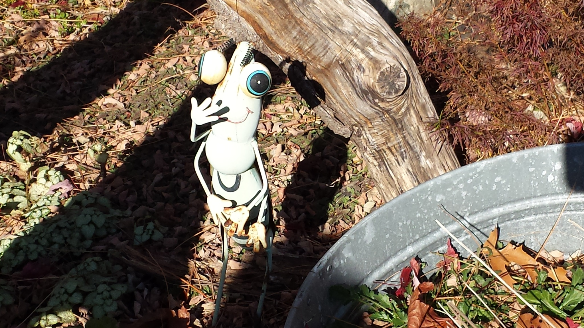 You Just Never Know Who's Lurking In The Bushes... by Cary J.Casse