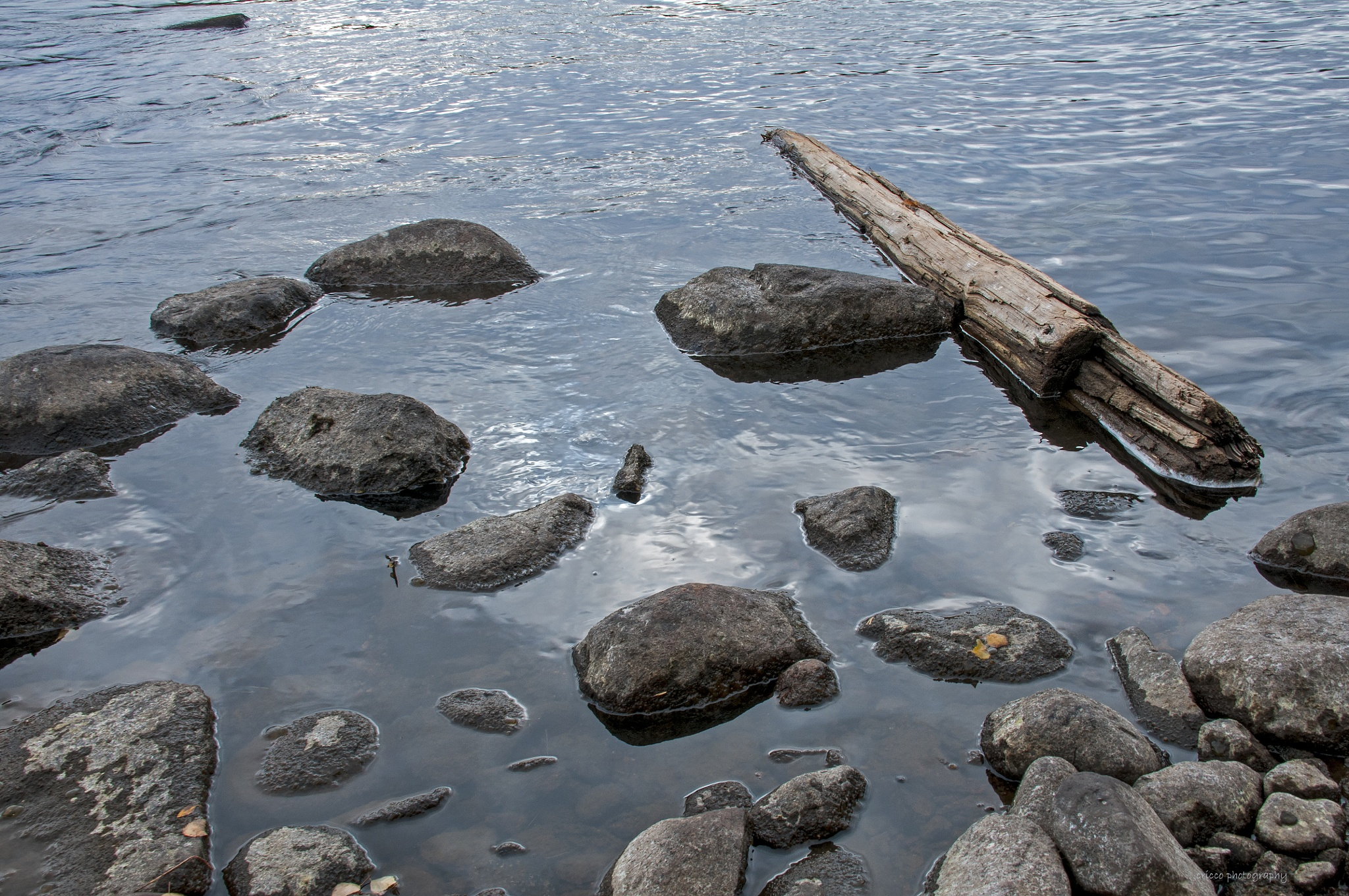 The river bed by cricco photography