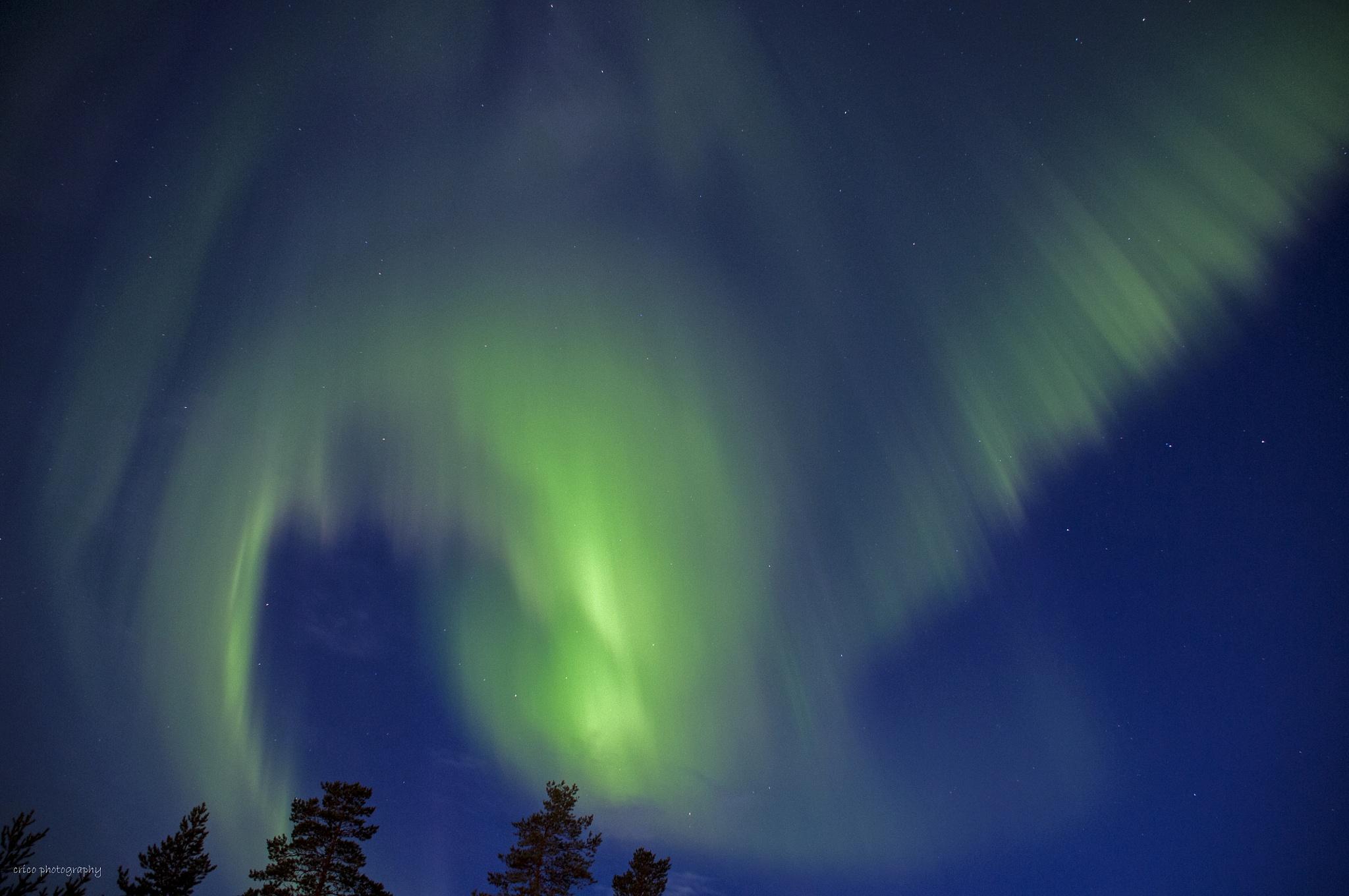 Aurora Borealis by cricco photography