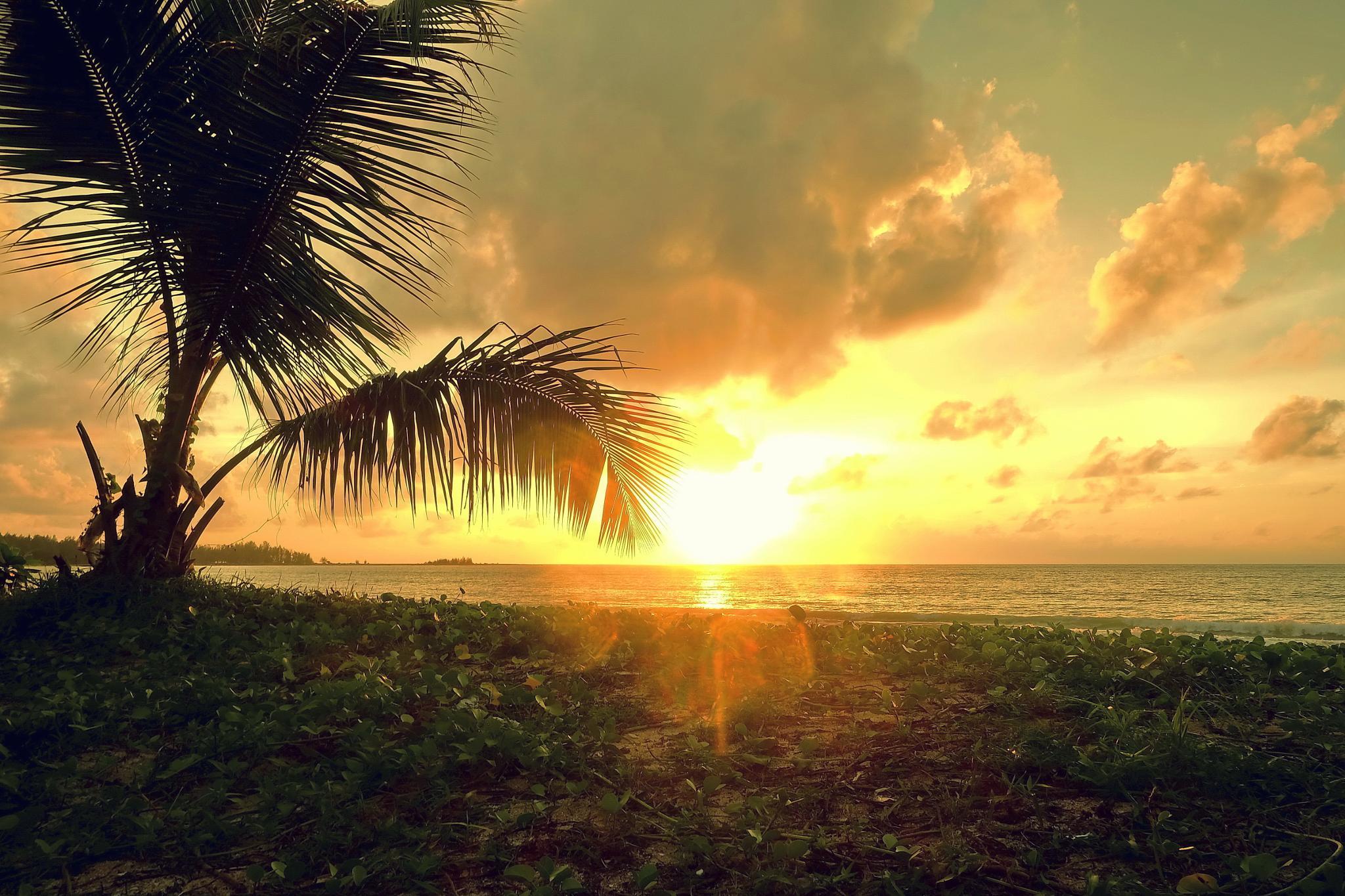 Sunset ... by Shane WP Wongperk