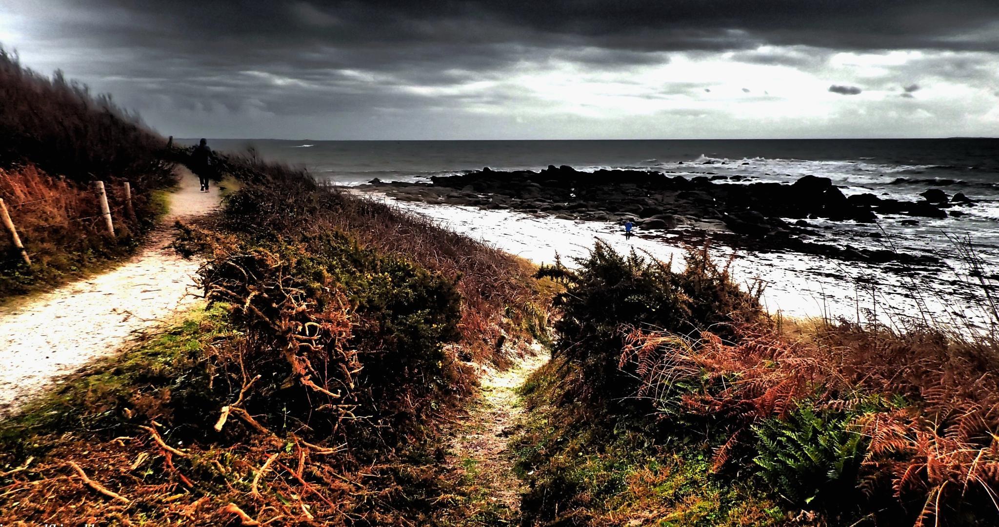 Photo de passage 160 by Jean-Paul Fhima