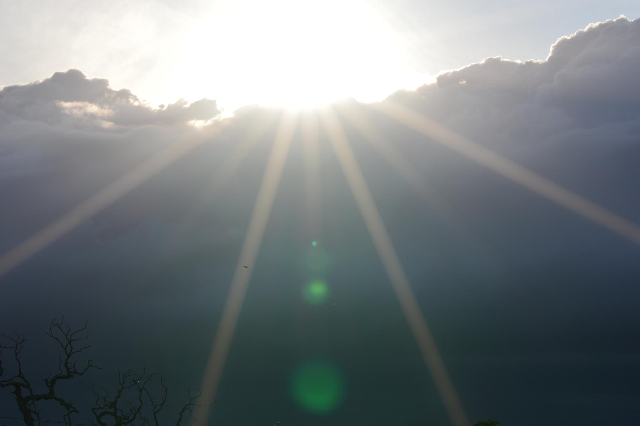 Photo in Random #clouds #sunshine #storm #nature #nikon #nikon d3200 #sigma