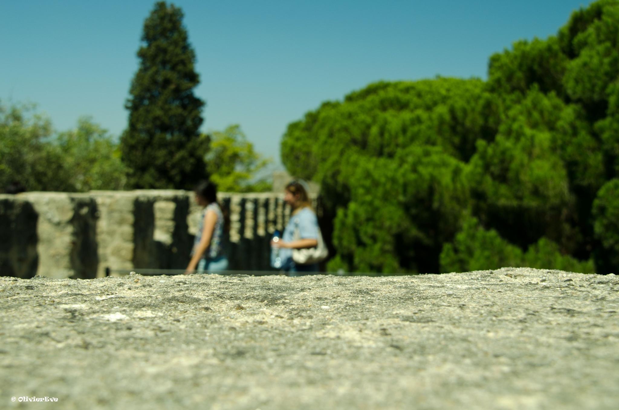 Les remparts by olivier evenisse