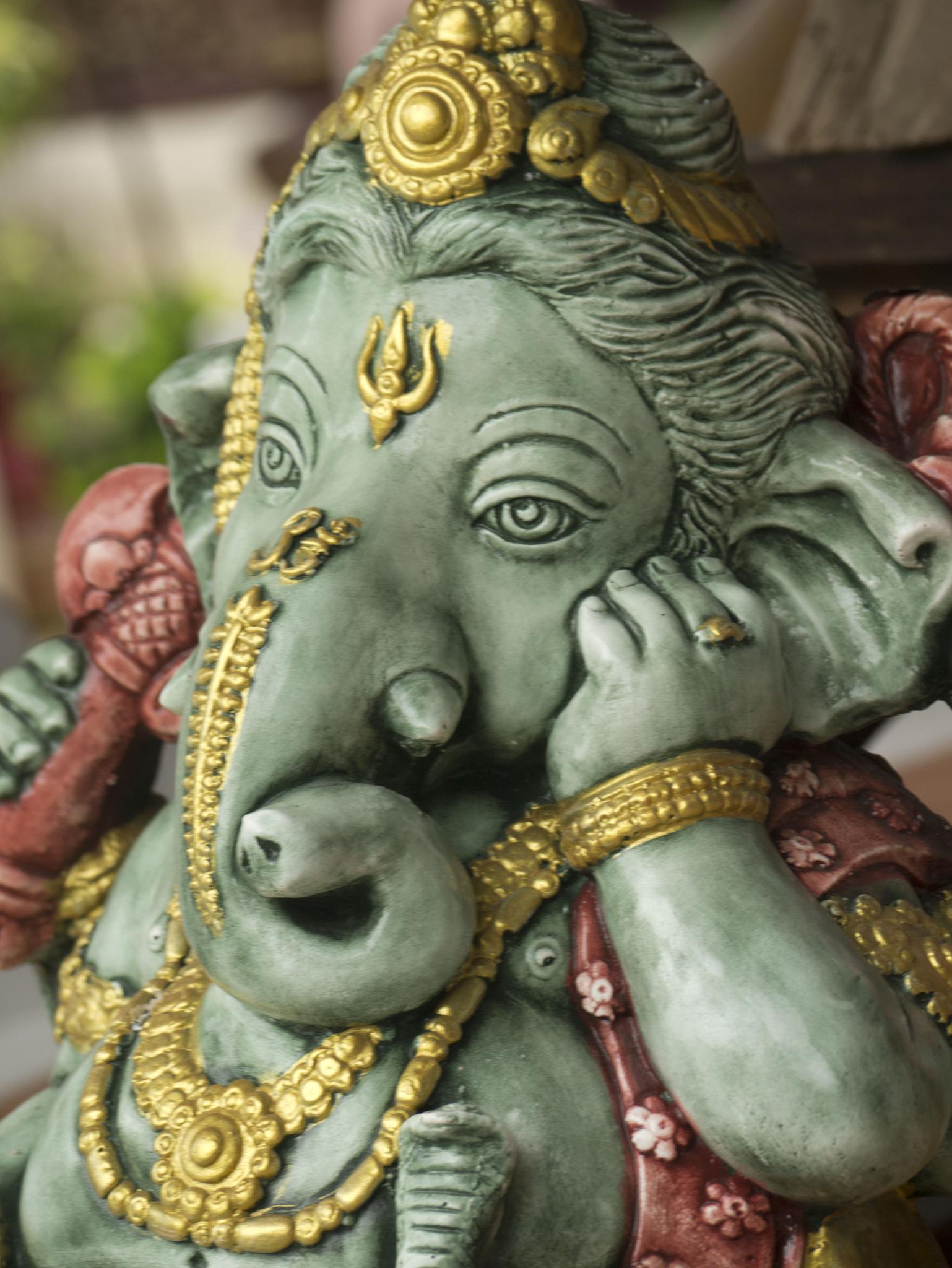 Elephant God by Sally Barker