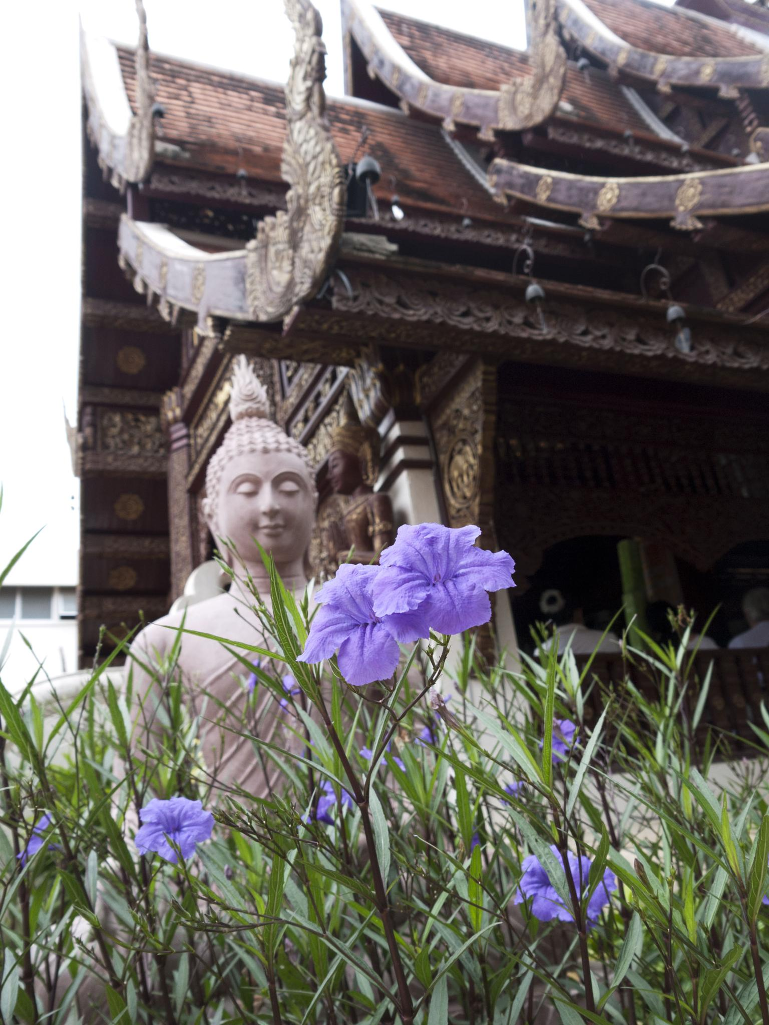 Lilac flowers in front of Buddha by Sally Barker