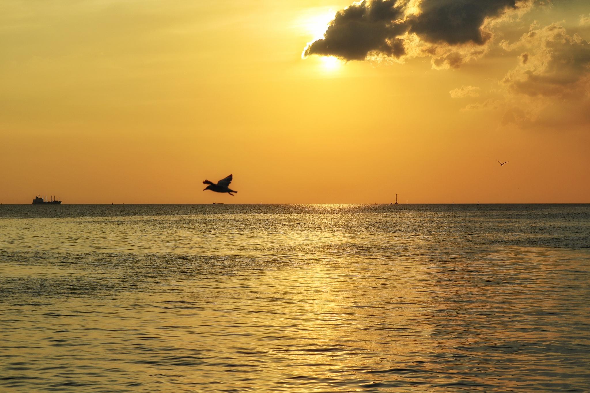 Sunset by surasaktime
