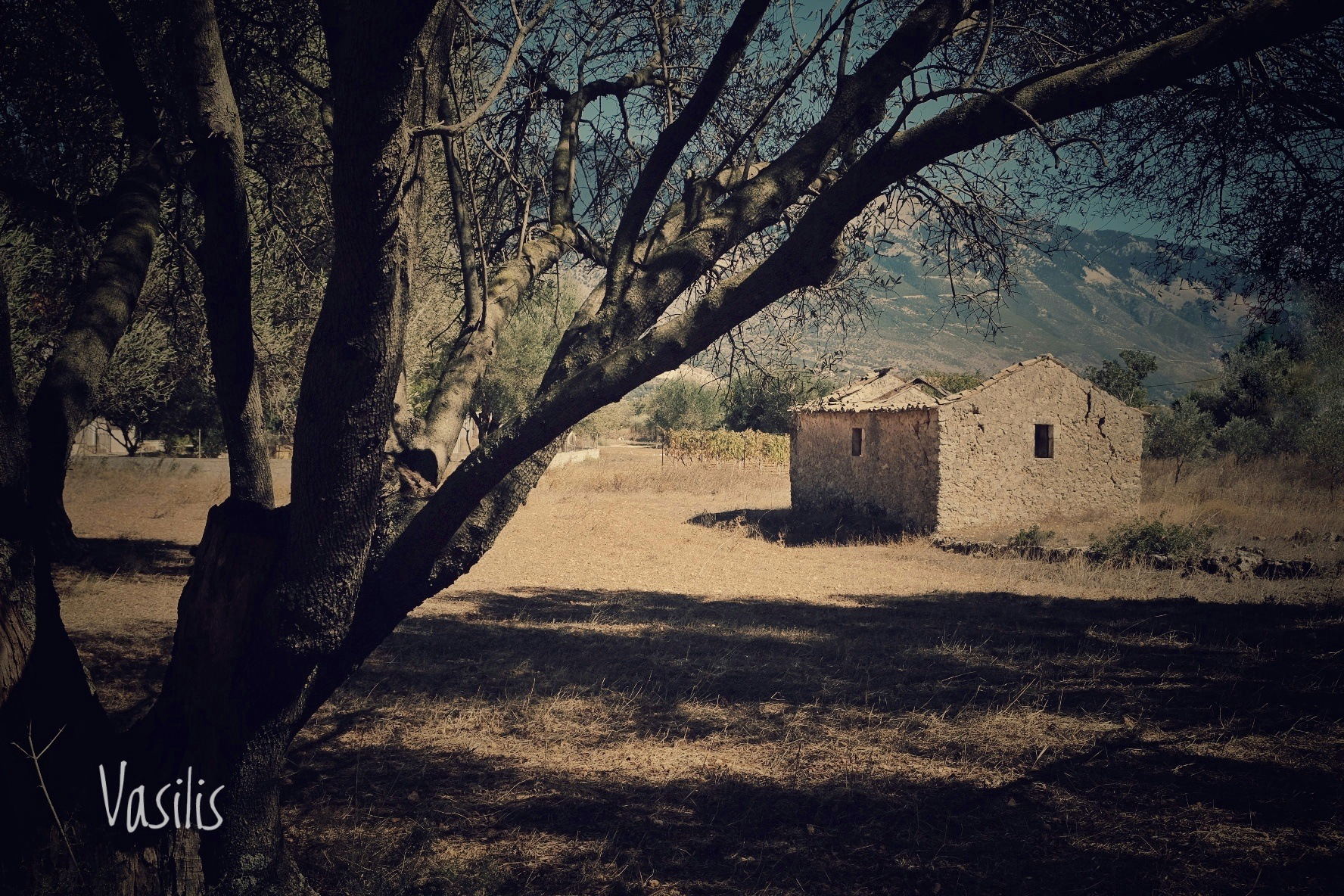 loneliness  by vasilis fragiskatos
