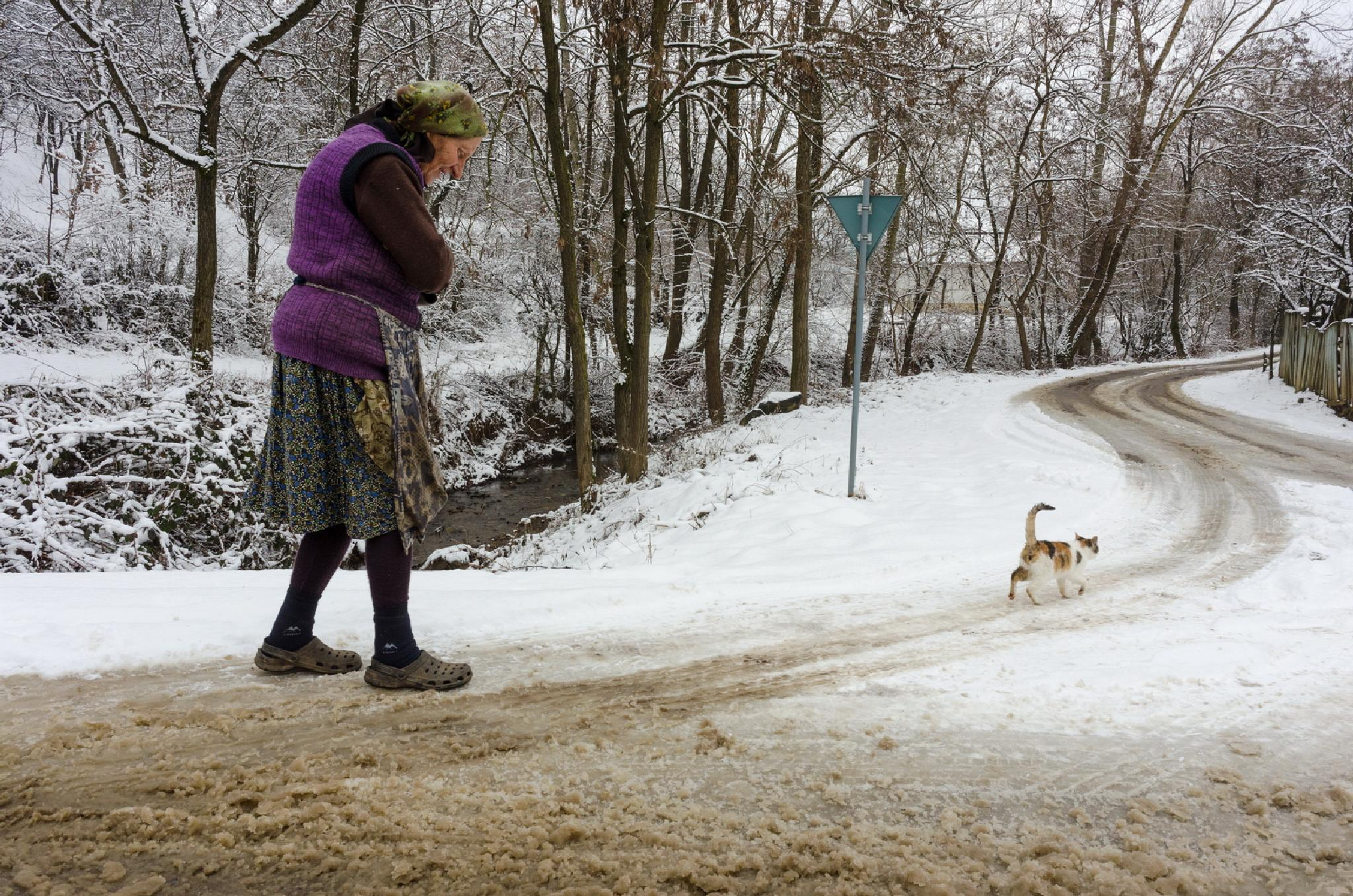 """Winter story"" by sandufeher"