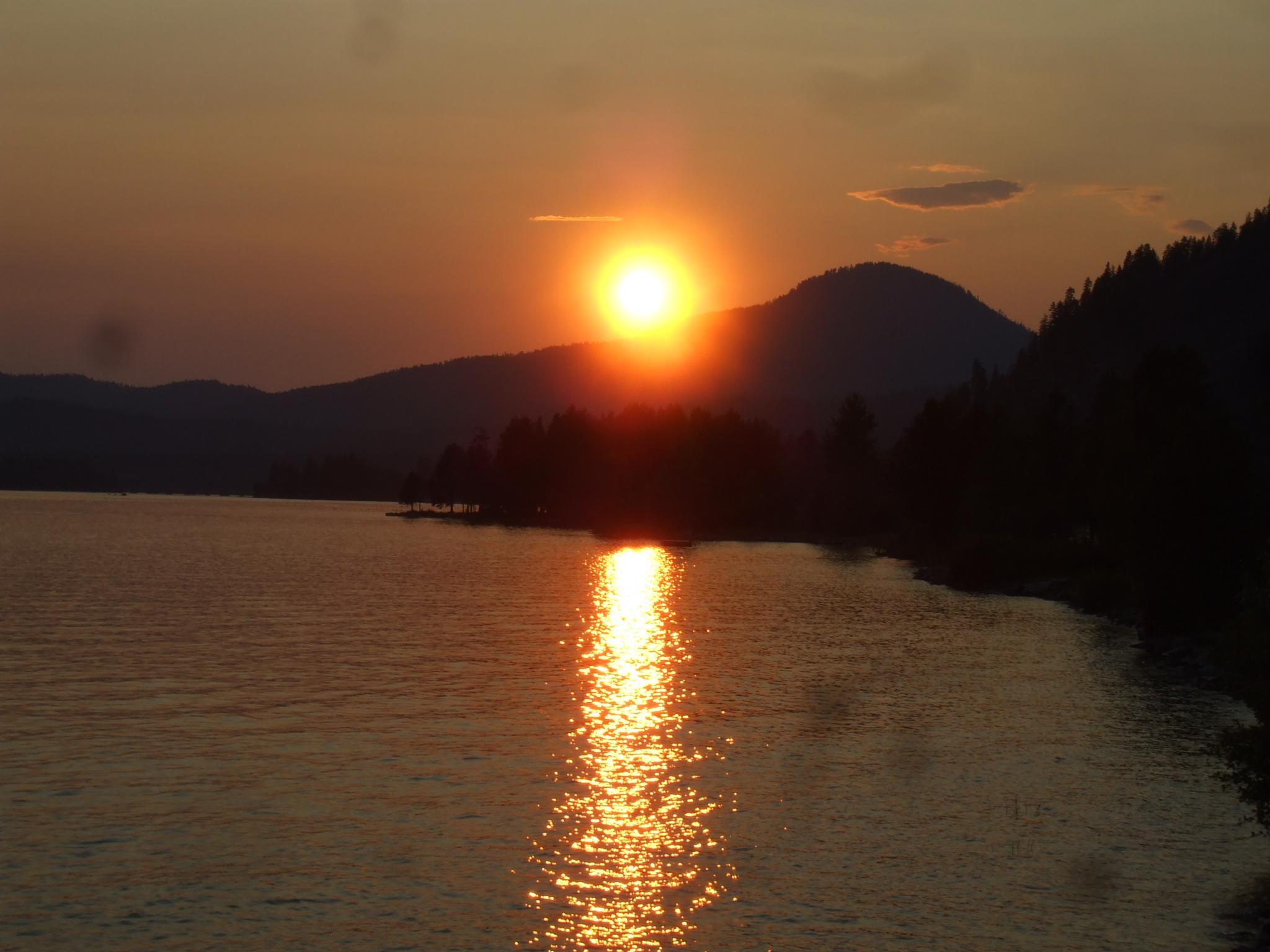 Photo in Random #sunset #nature #rural