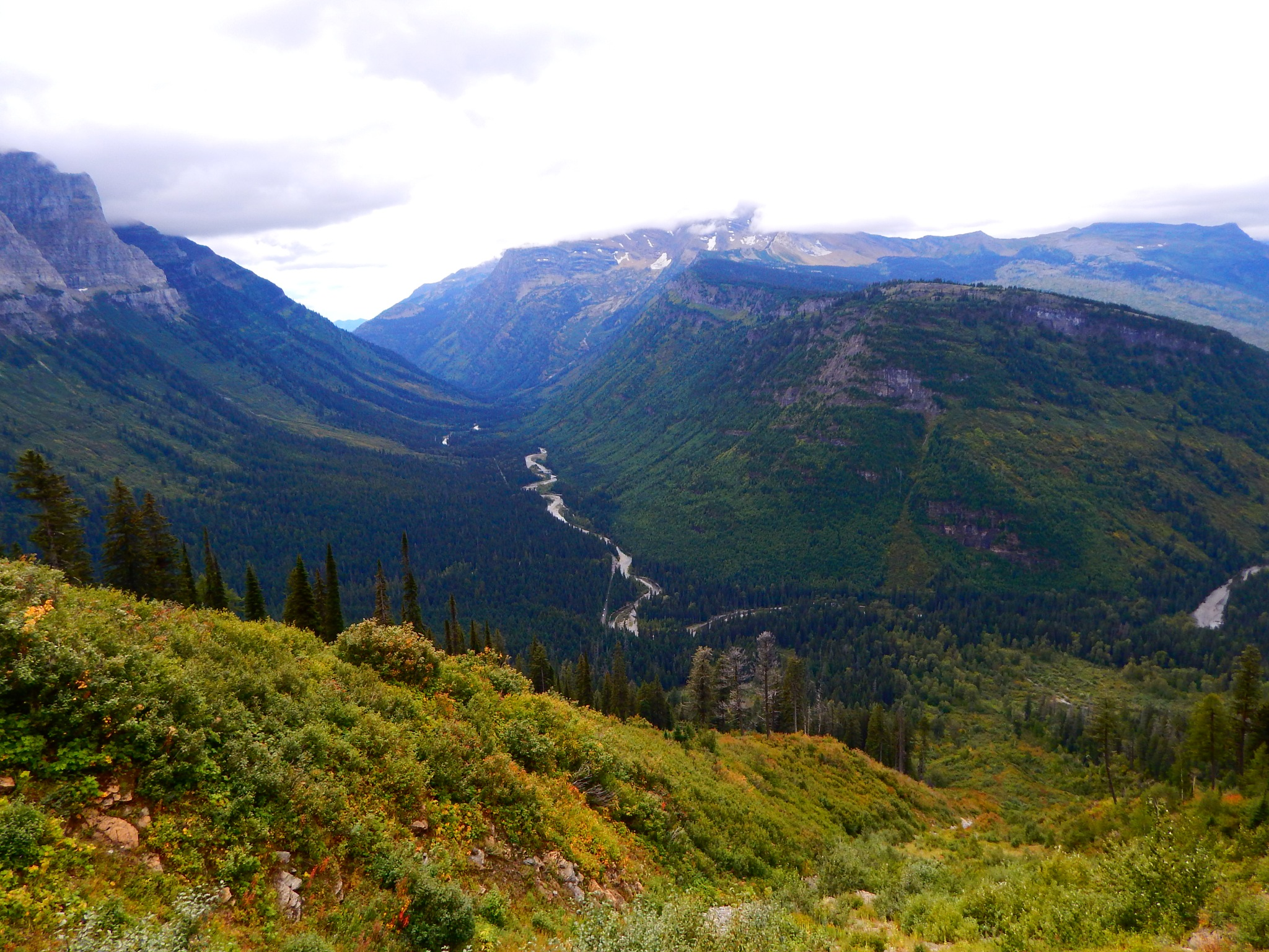 View in Glacier National Park by Lorie B.