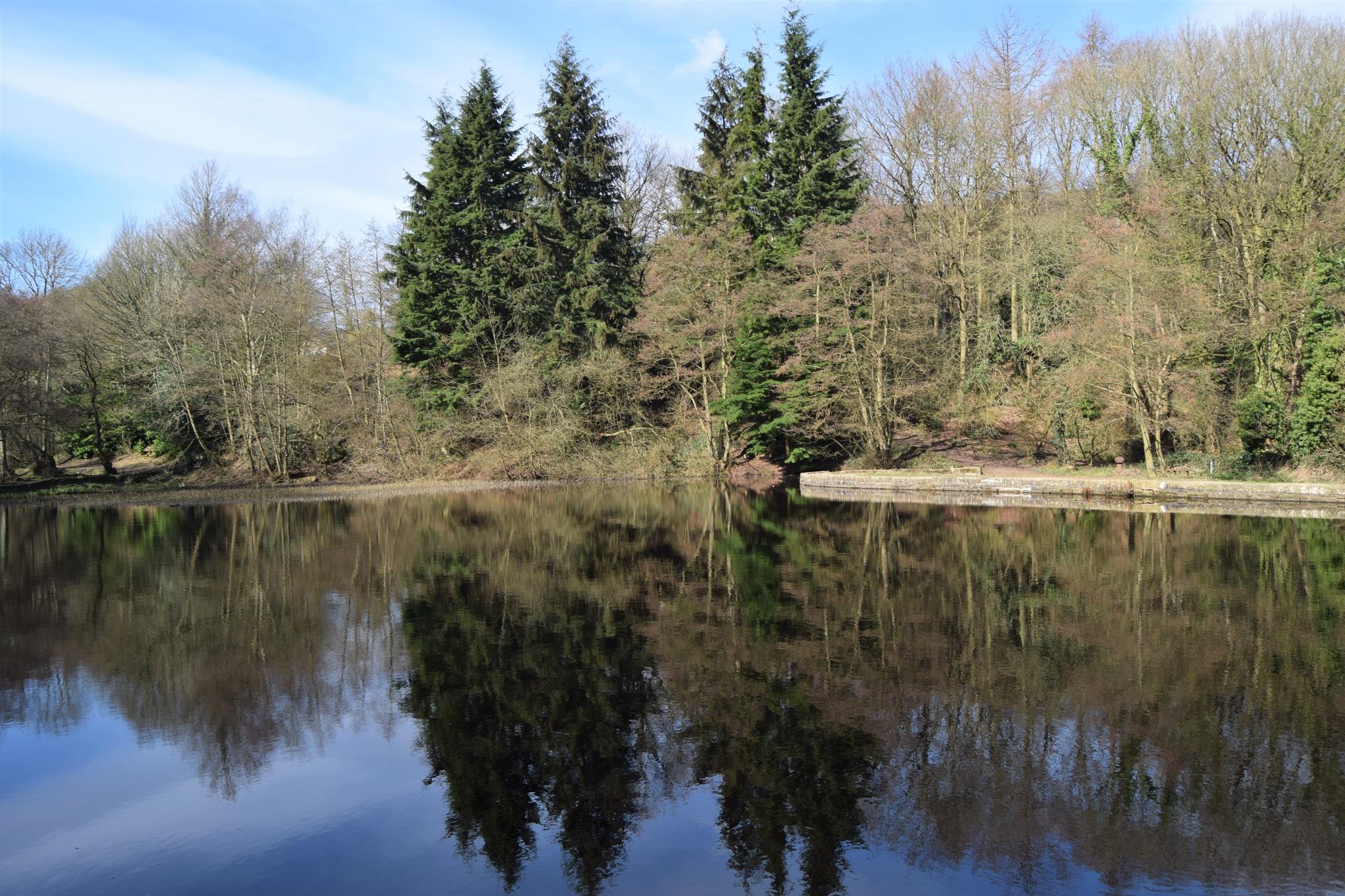 lake by Beata Andziak