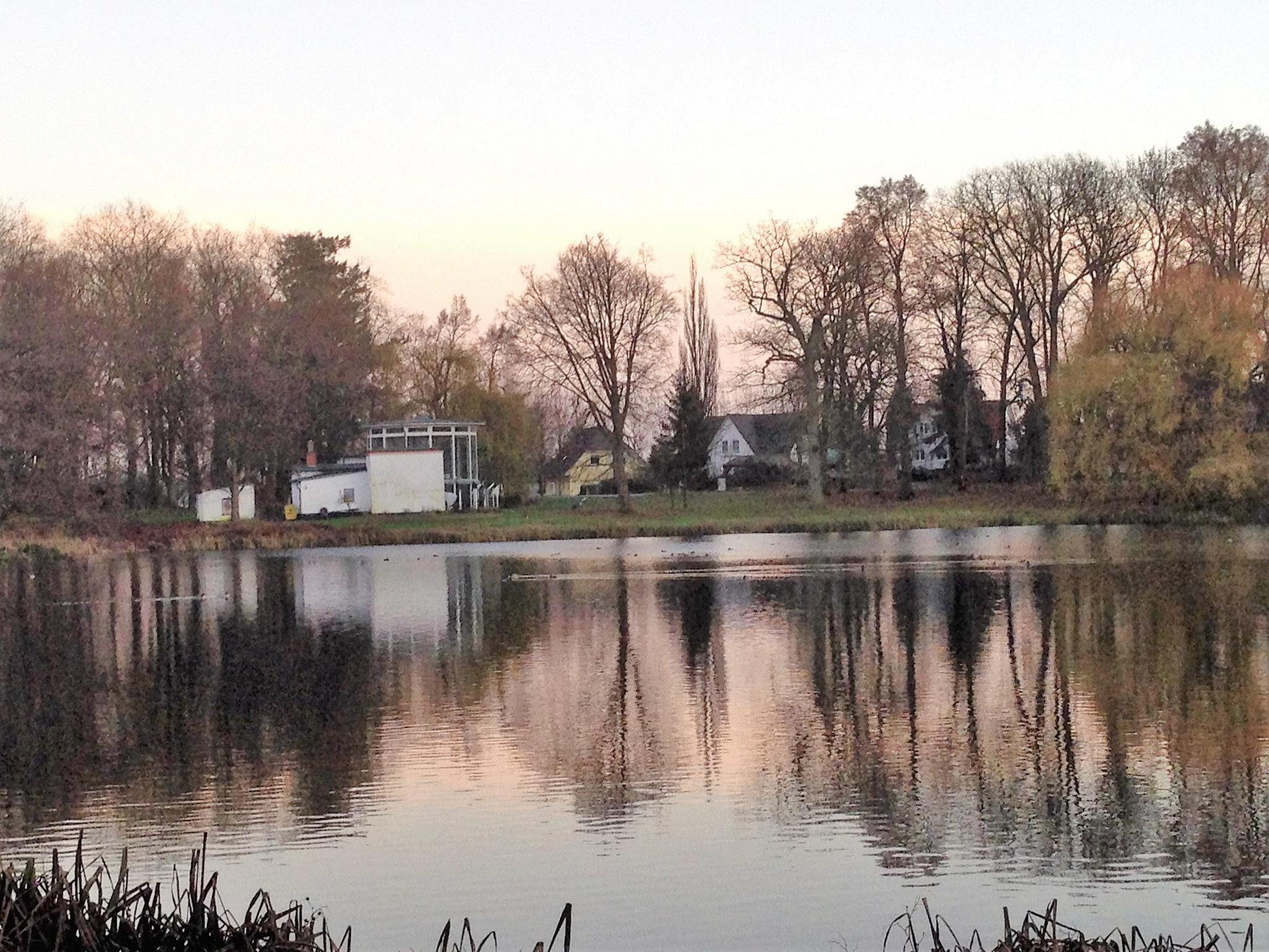 pond 9 by thwdrehbuch