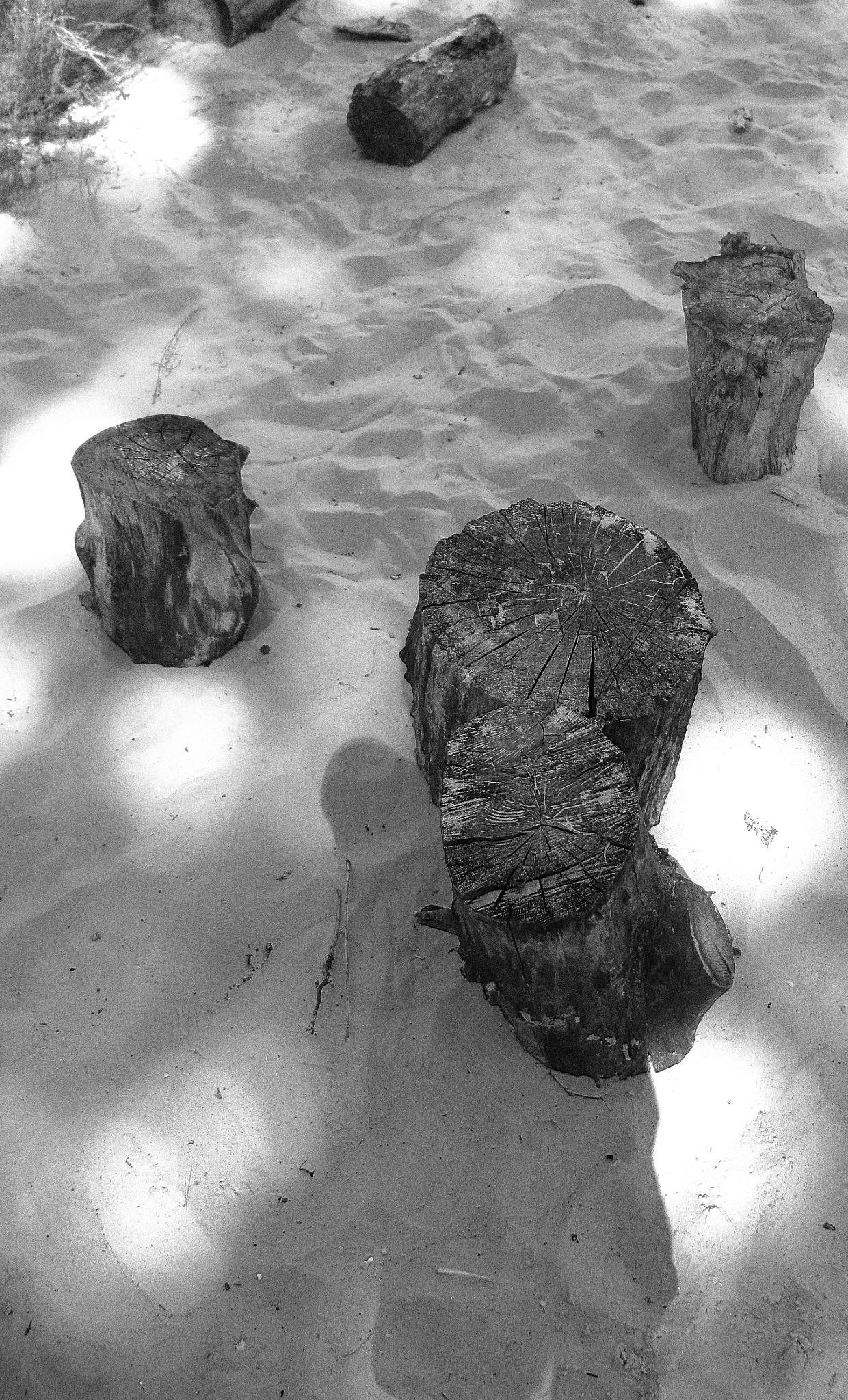 Remains by Pasha Korzh