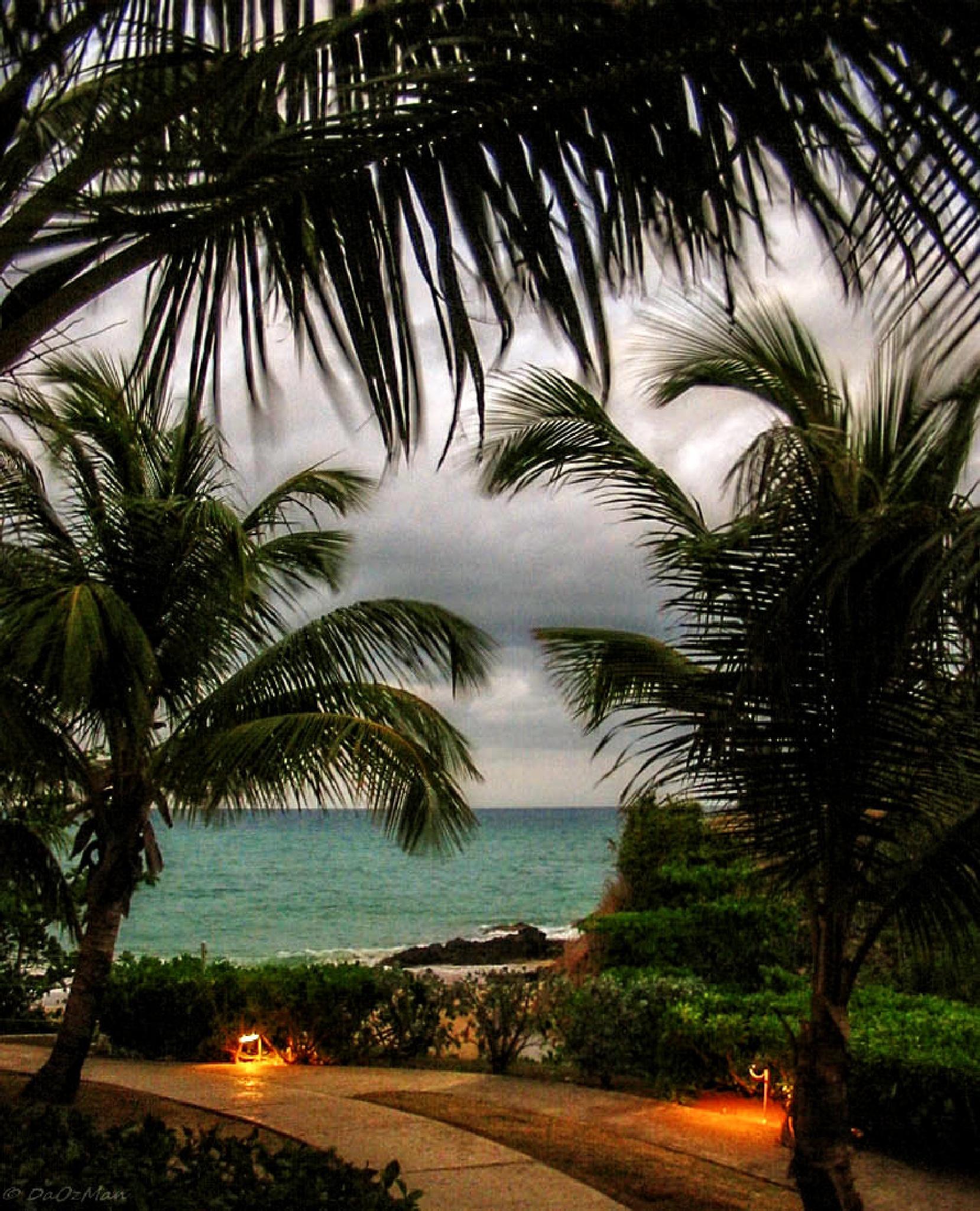 Nice view by DaOzMan