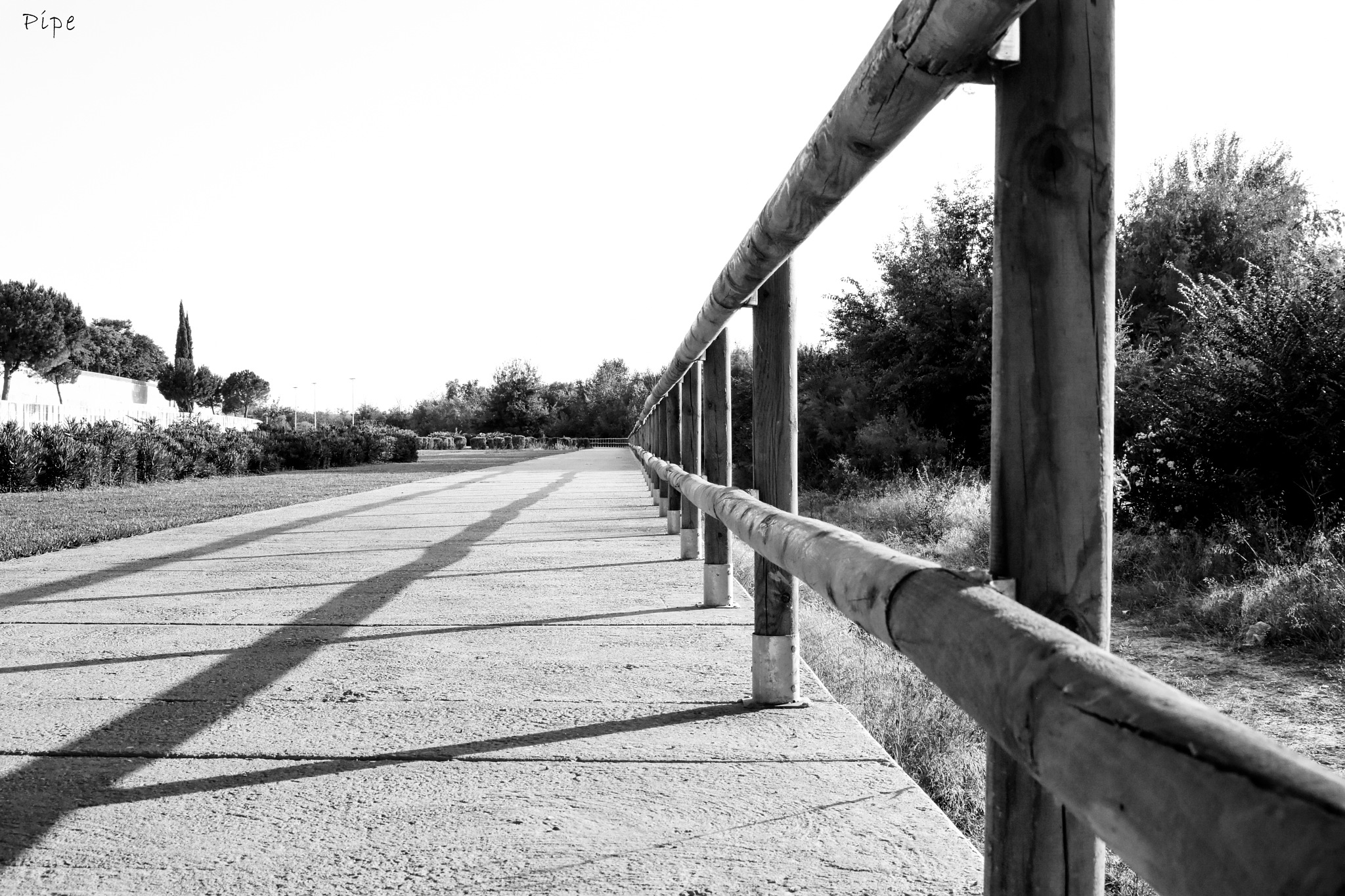 Follow the lines... by Luis Felipe Muñoz Vaquerizo