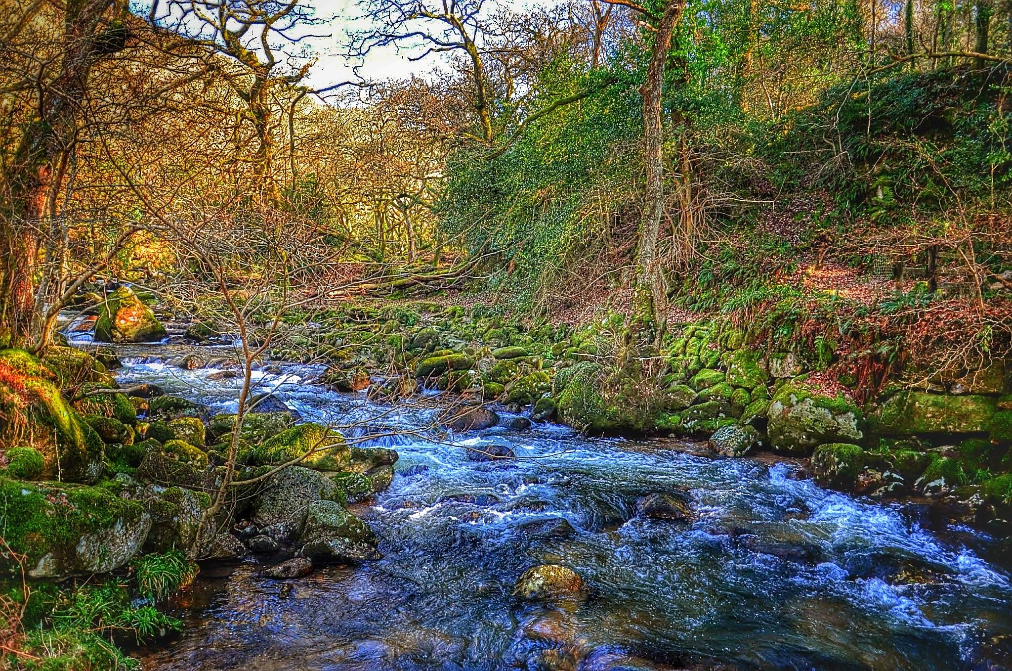 Where a river flows by johncedriccoles123