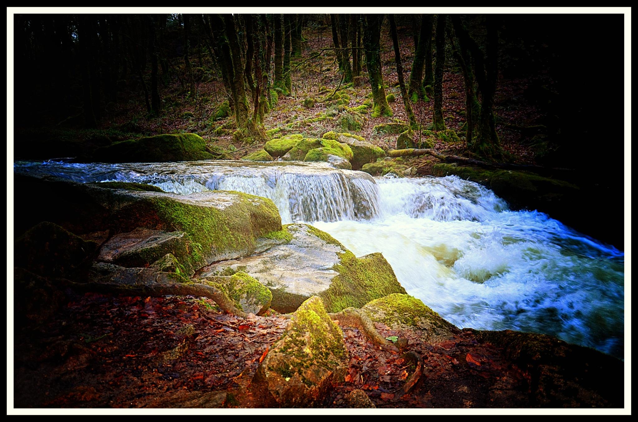 The River Fowey by johncedriccoles123