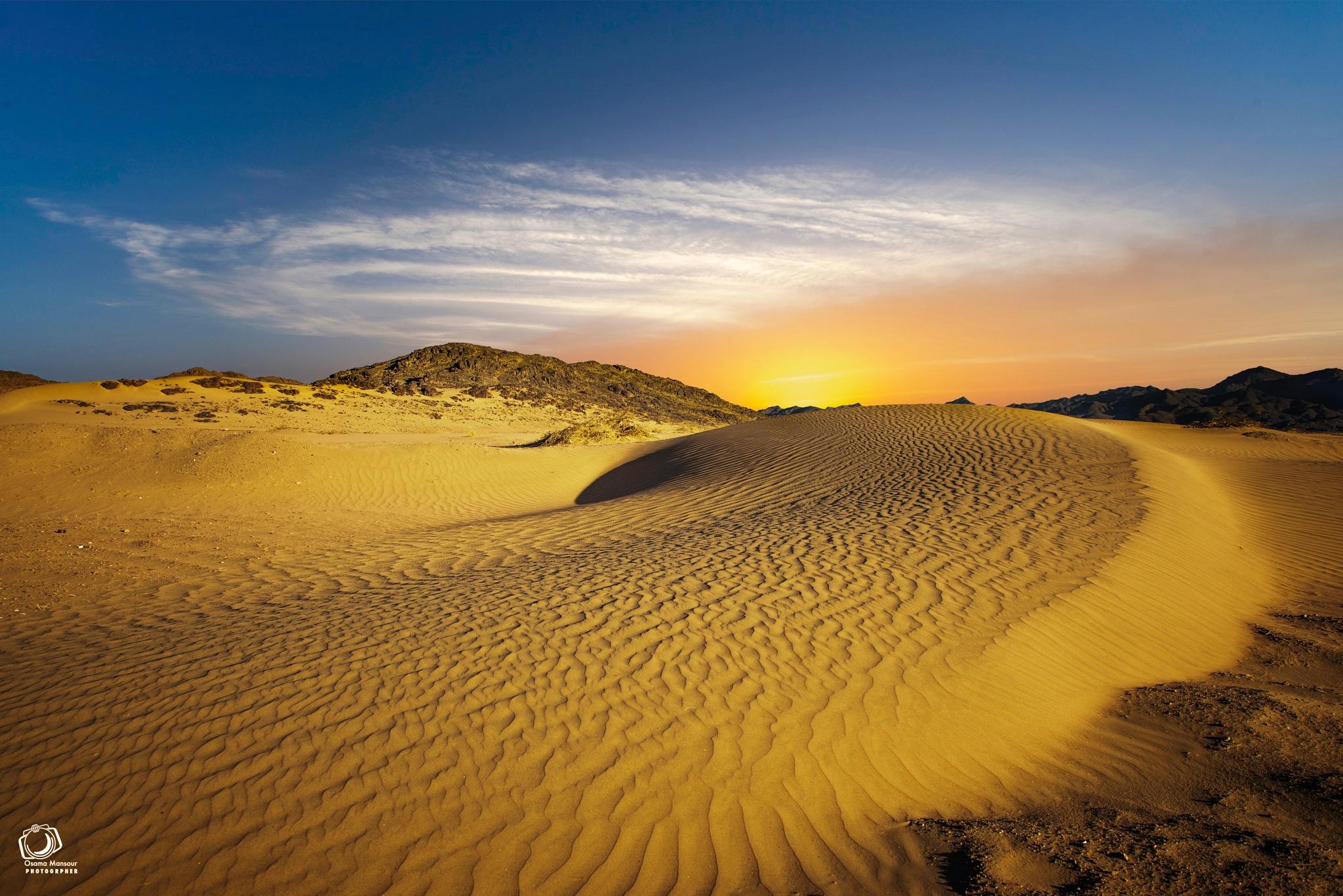 Golden Desert by Osama Mansour