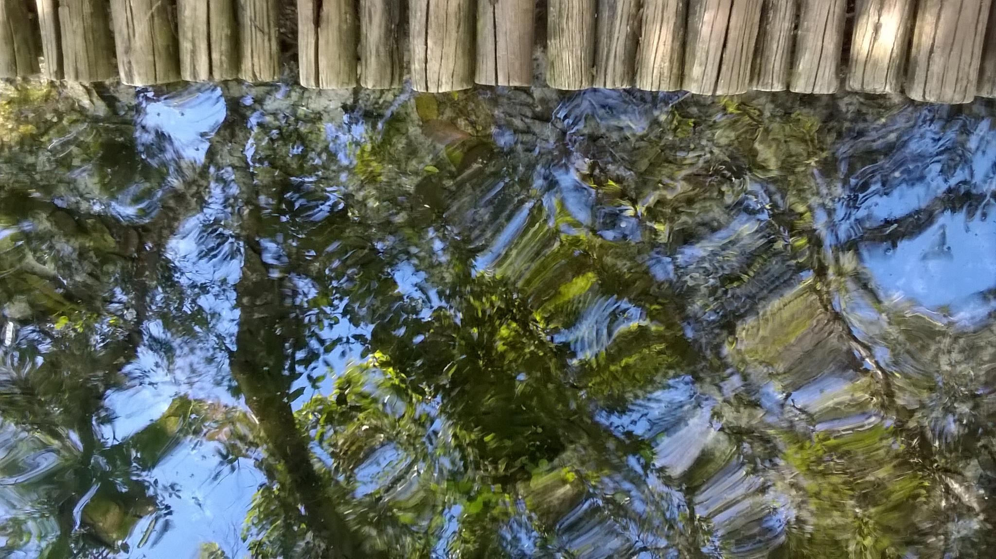 Areia que canta by Darci Ferreira Holanda