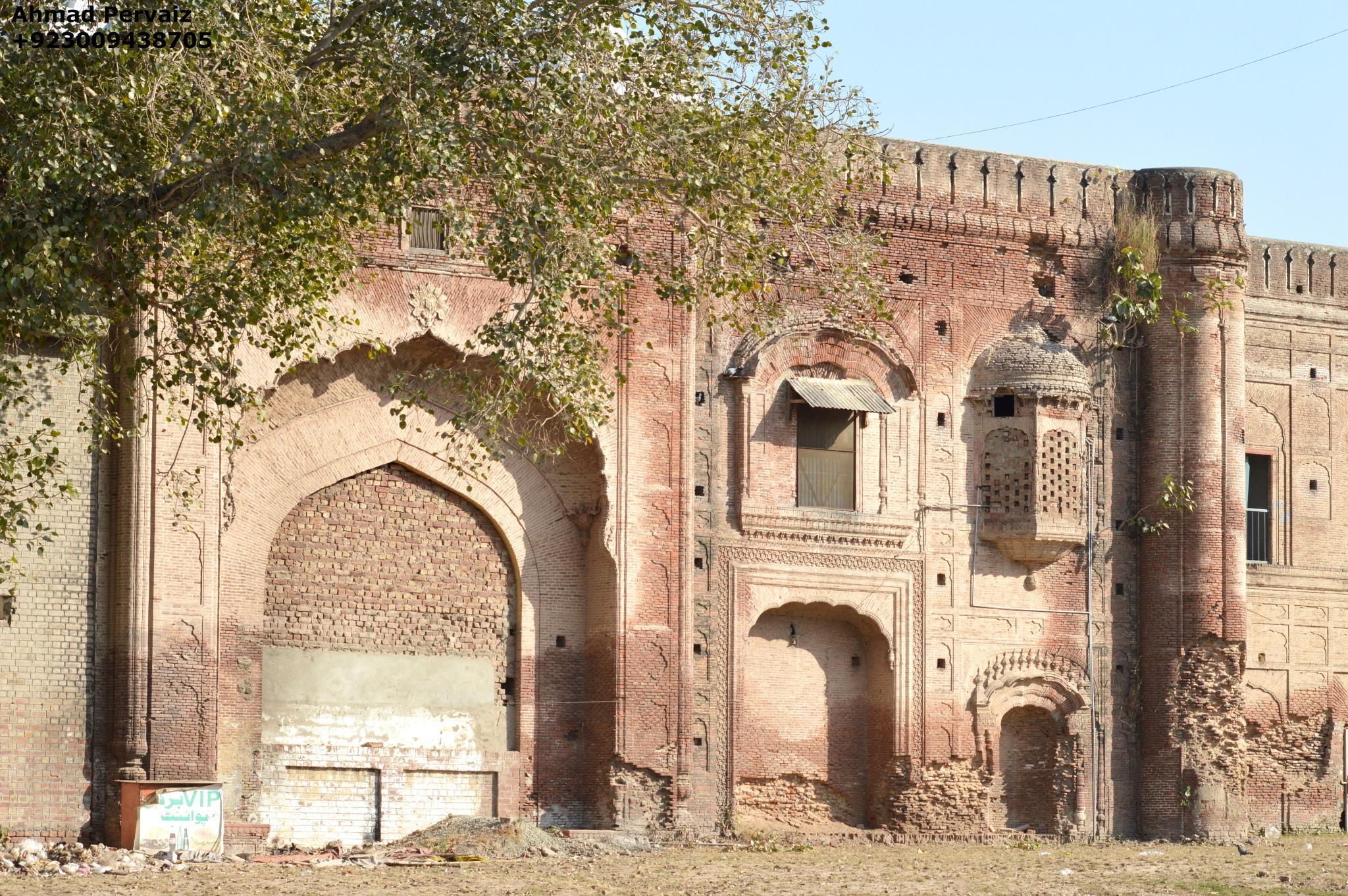 Portion of a Side Wall - Lahore Fort  by pervaiz_jiu-jitsu