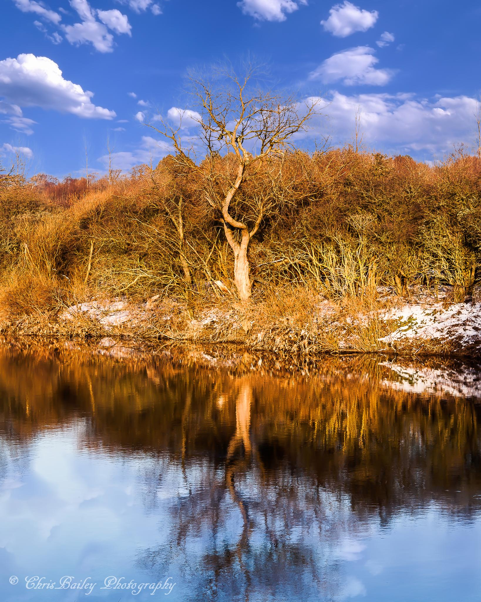 Cold Reflections - County Durham UK by Chris Bailey