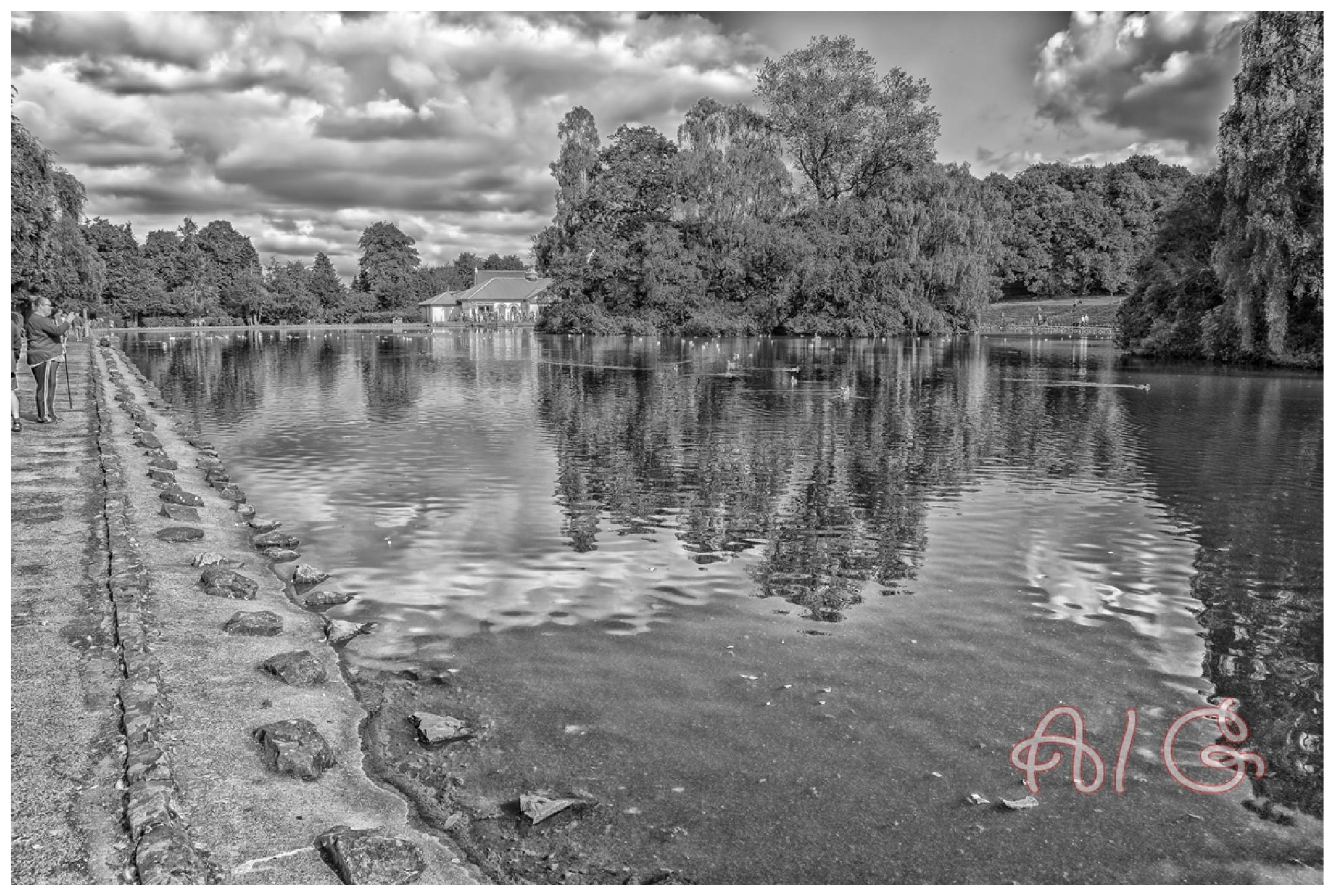 Park by AlanG