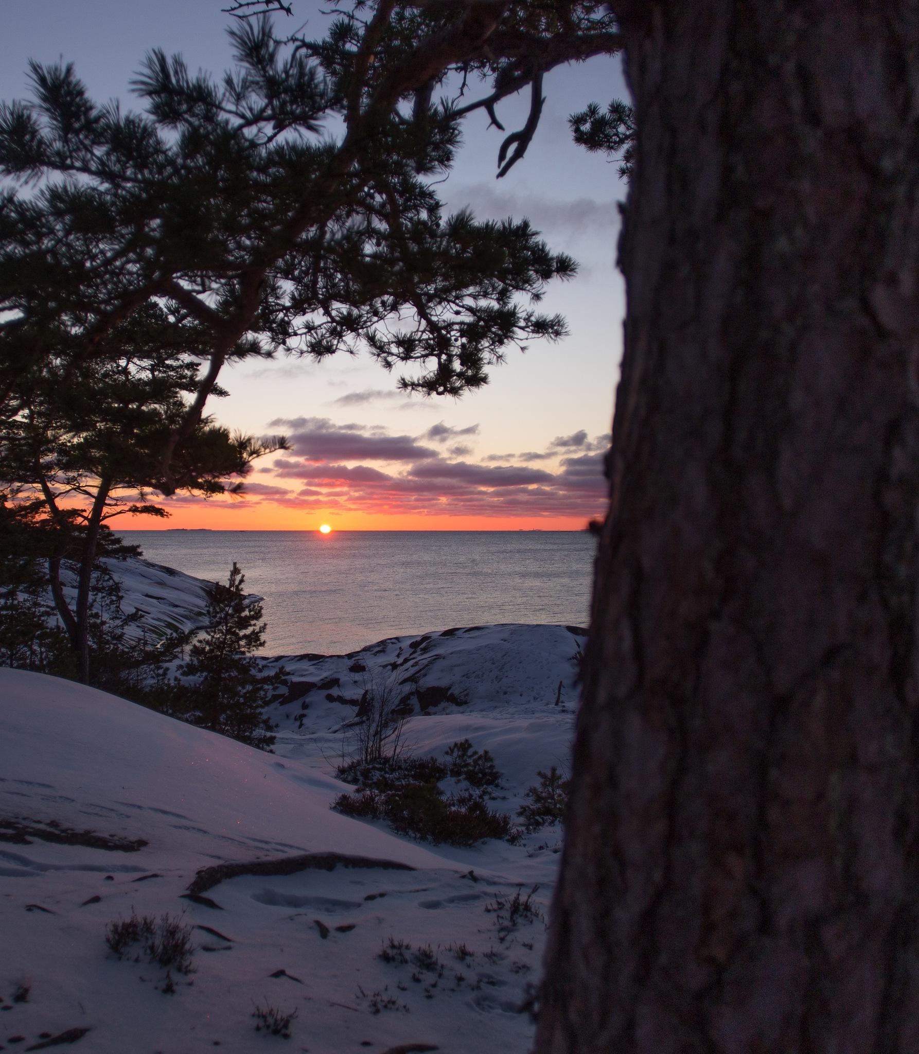 Sunset today by samitakarautio