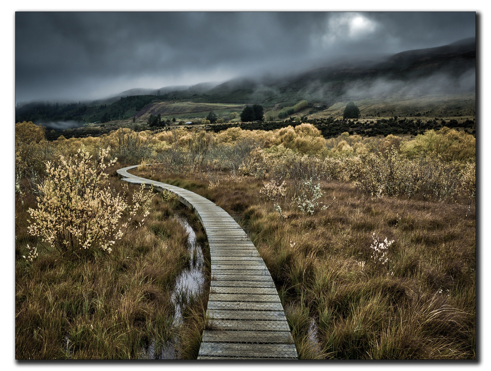 Glenorchy Boardwalk by Jackie Evans