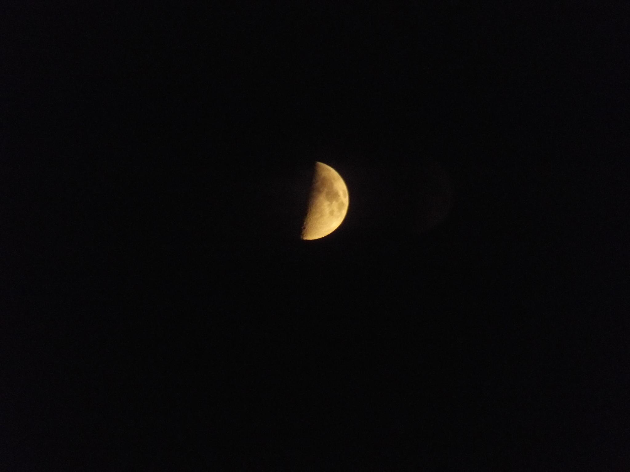 The Moon Tonight. by Abbie