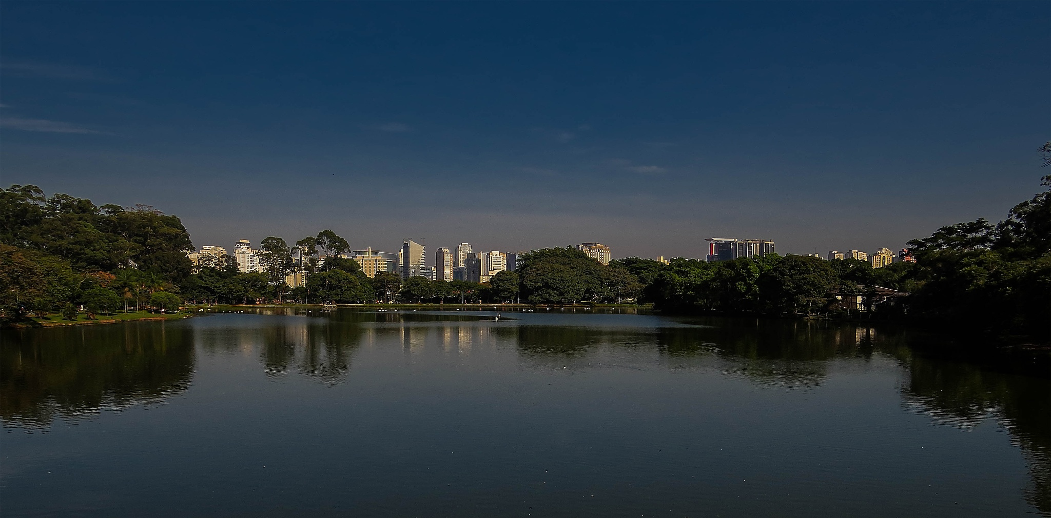Ibirapuera/ São Paulo/ Brasil by LuixCelso