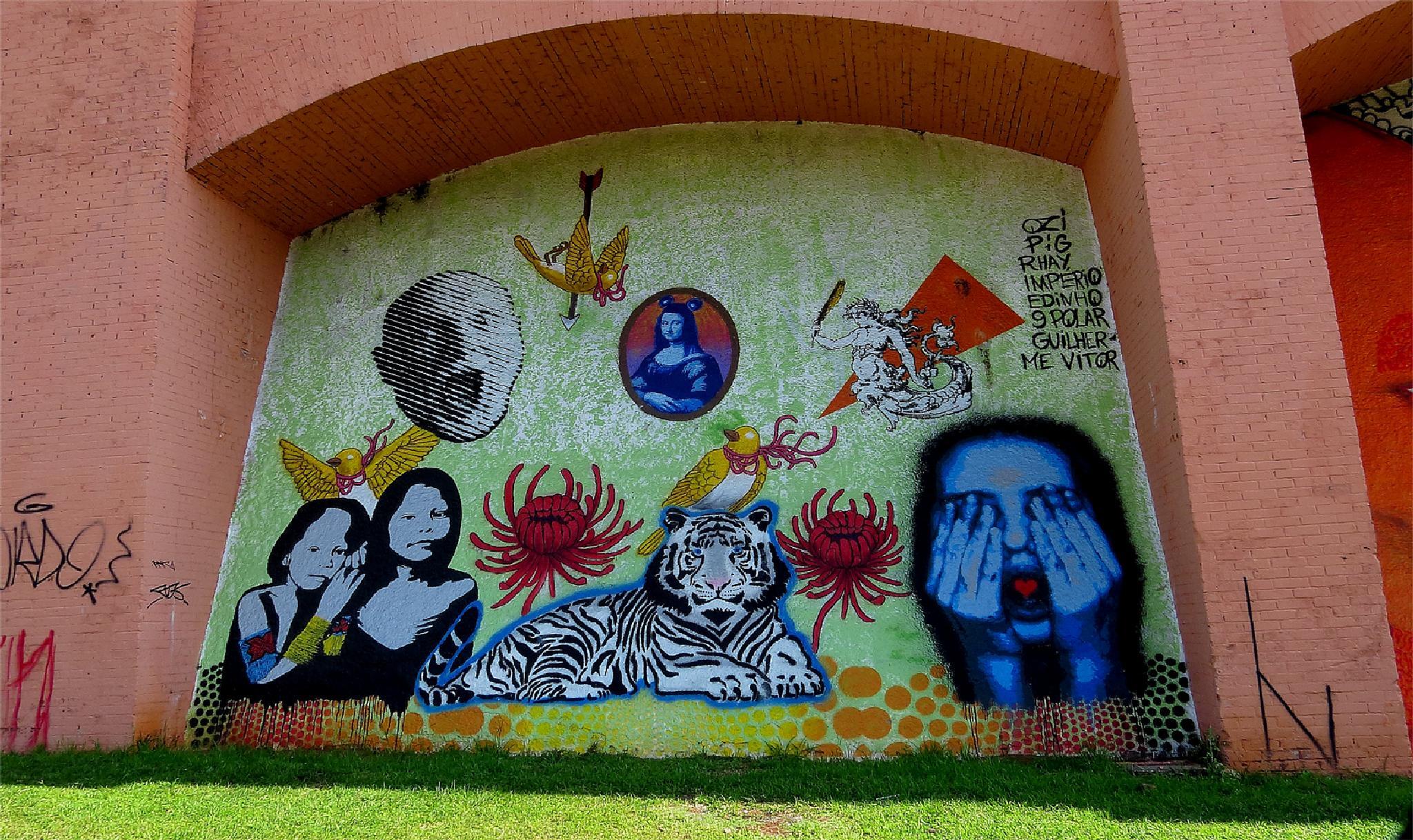 Graffiti/ Sao Paulo/ Brasil by LuixCelso