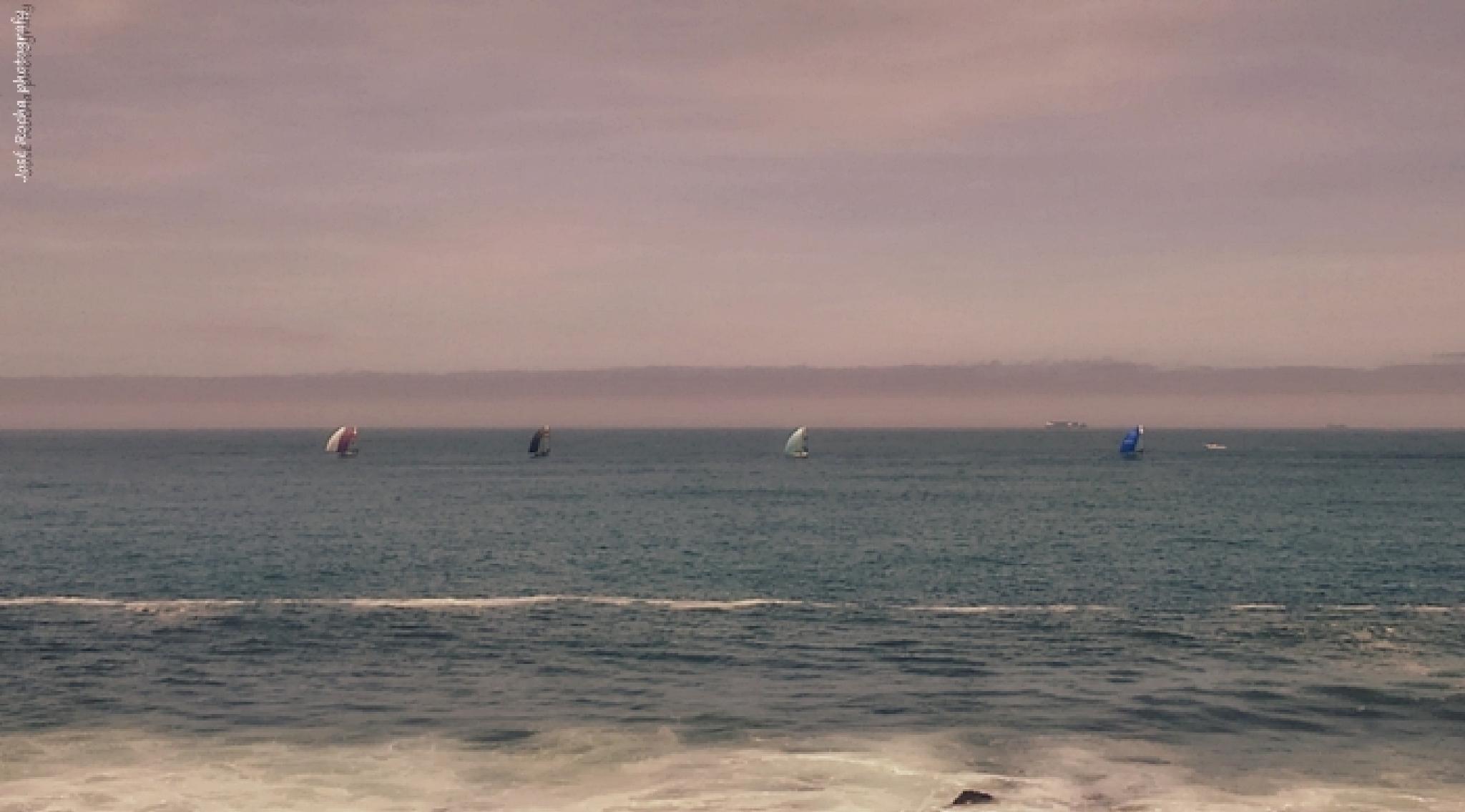 Regatta sailing boats by josé rocha photography