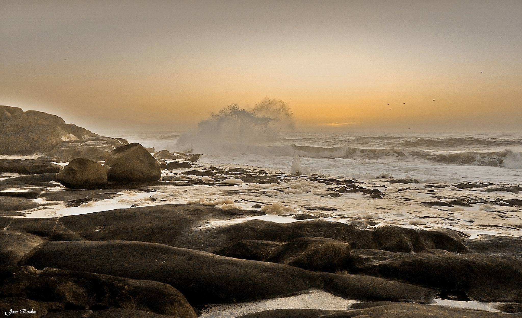 gold stones... by josé rocha photography