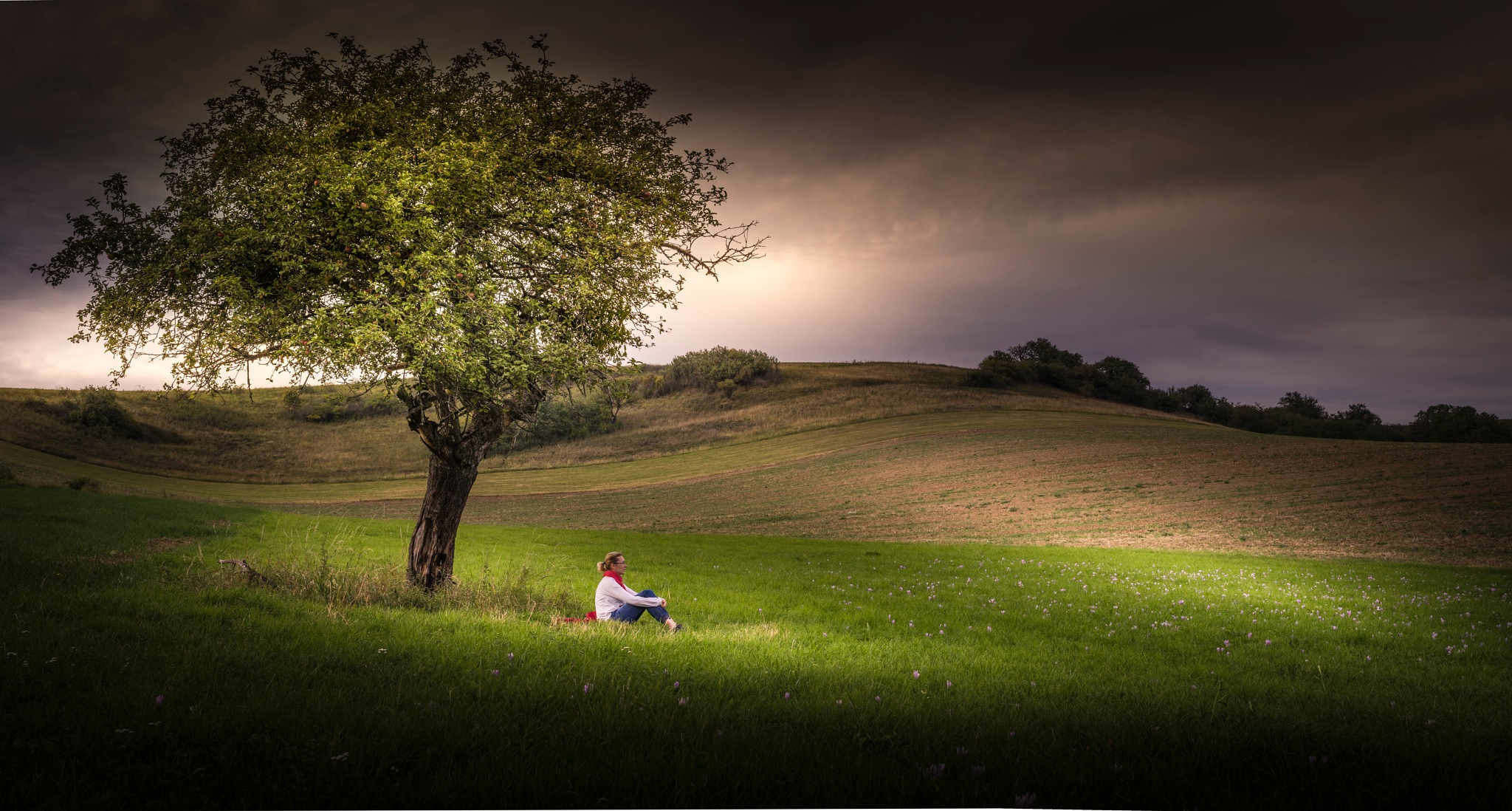 Evening under the apple tree by MENGAart