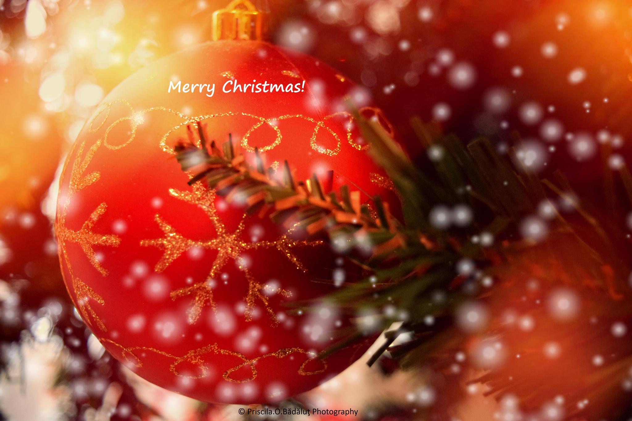 Merry Christmas!!! by Priscila Octaviana Bădăluț