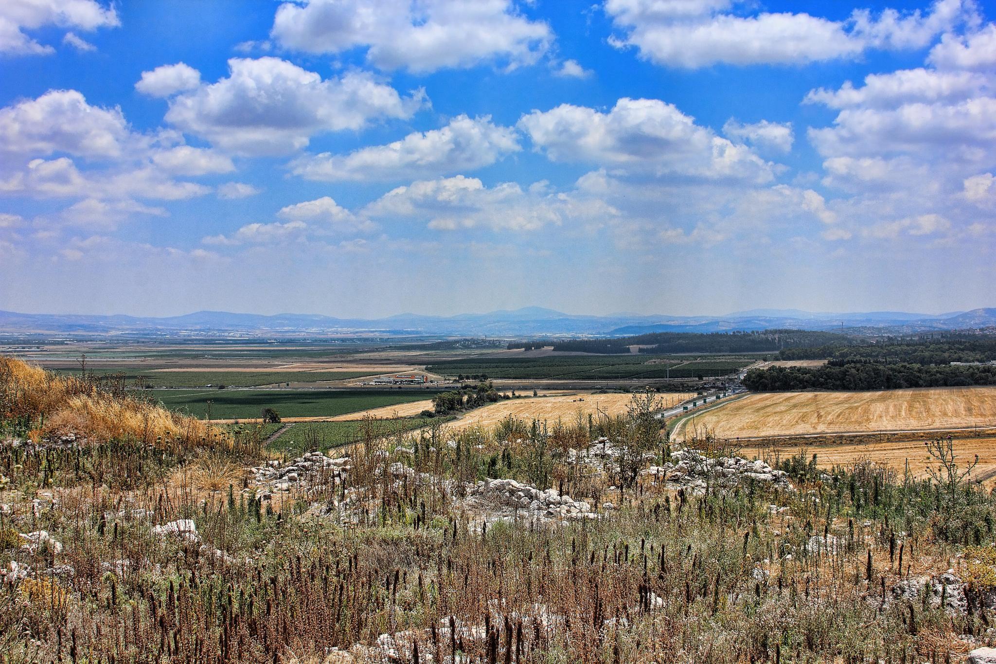Valey .Israel  by Sam Ribinik
