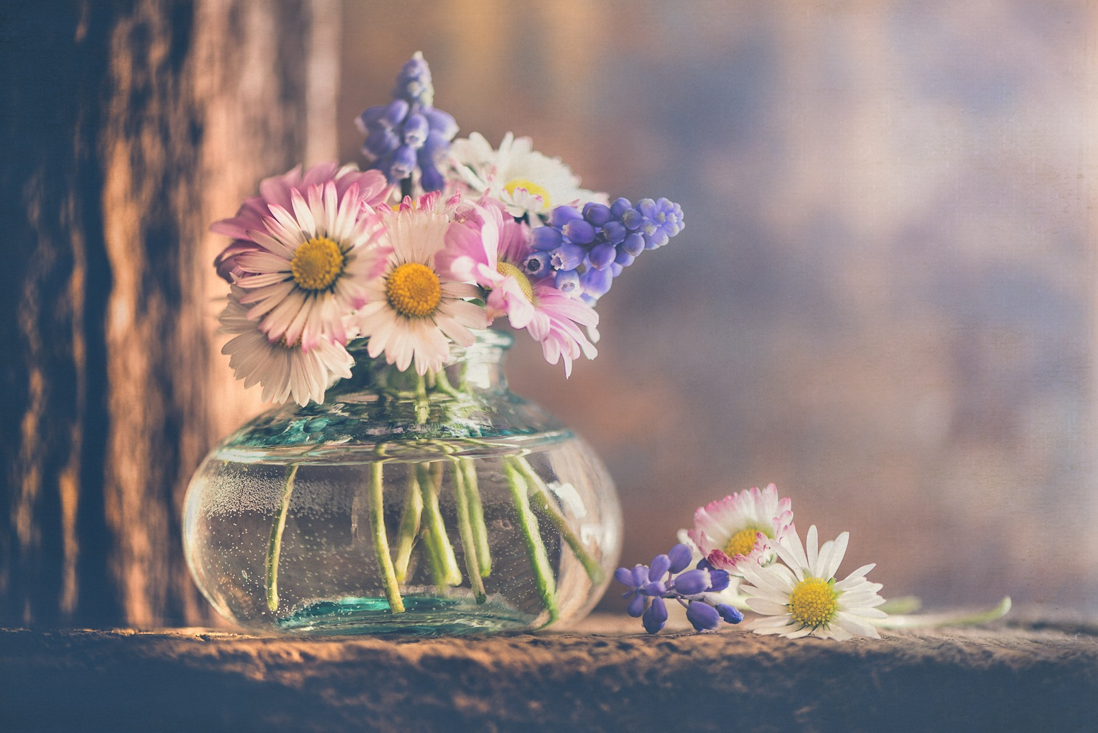 Spring bouquet by Rosana