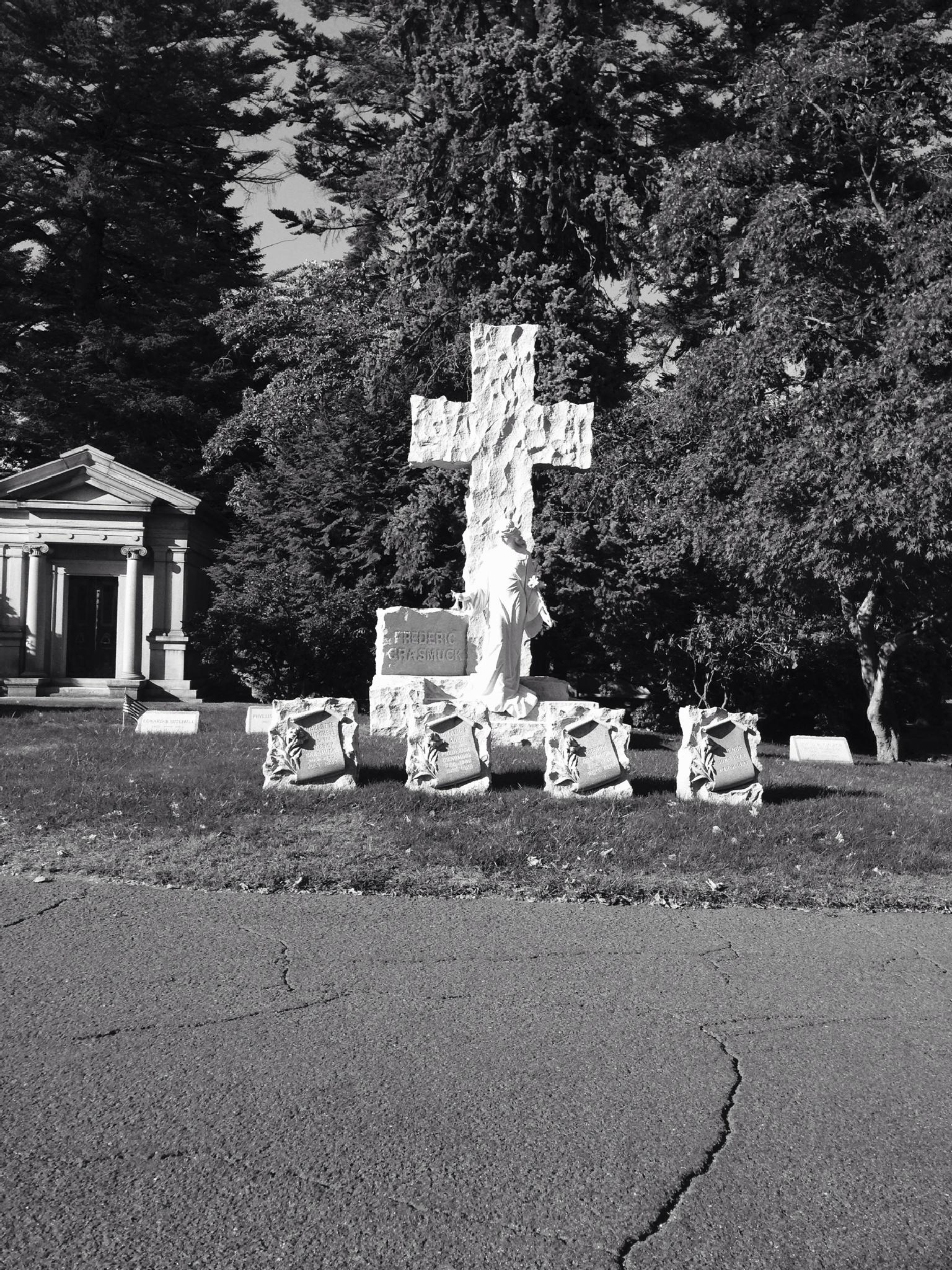 Woodlawn Cemetery   by Abu E Mansoor